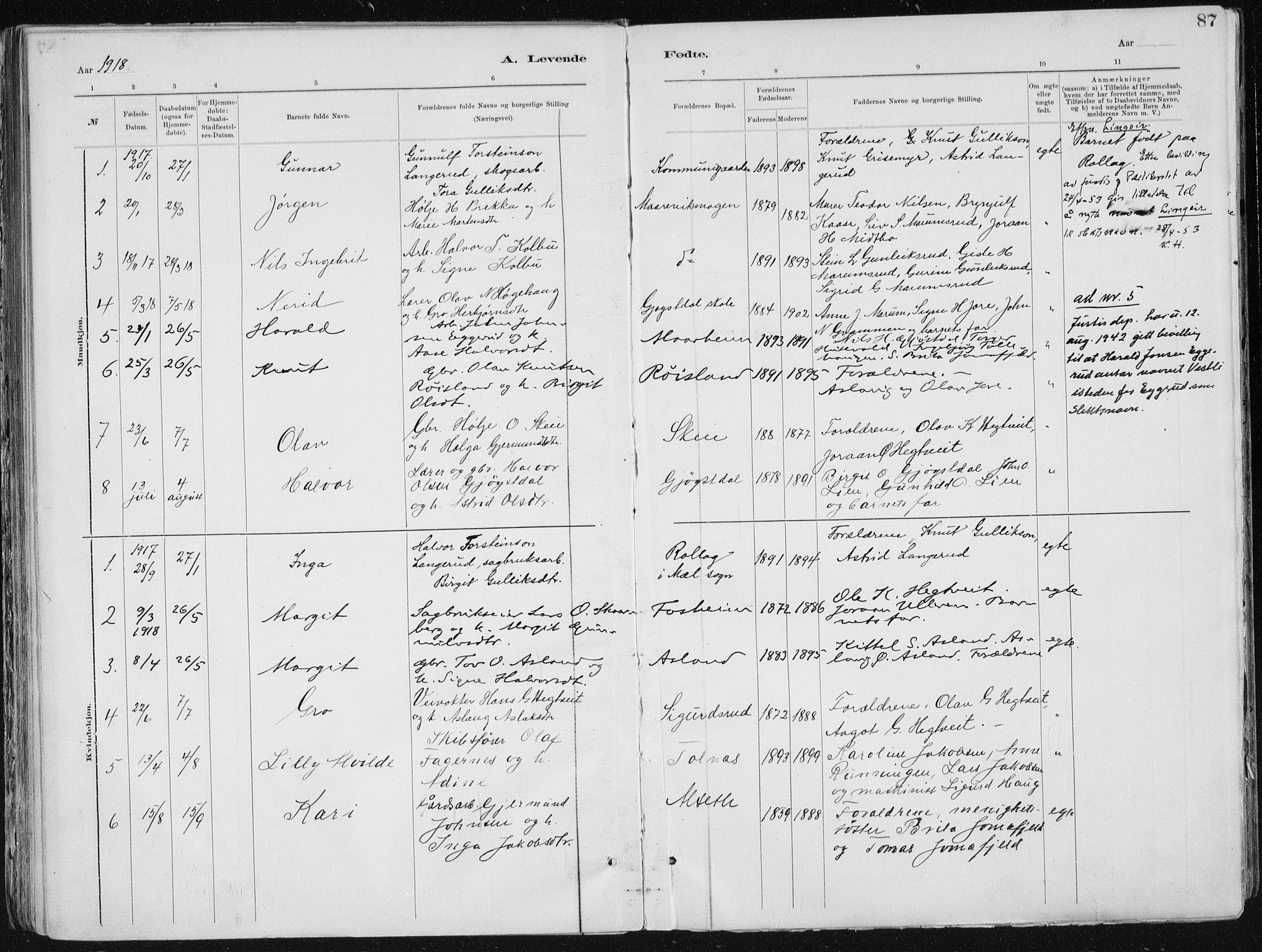 SAKO, Tinn kirkebøker, F/Fa/L0007: Ministerialbok nr. I 7, 1878-1922, s. 87