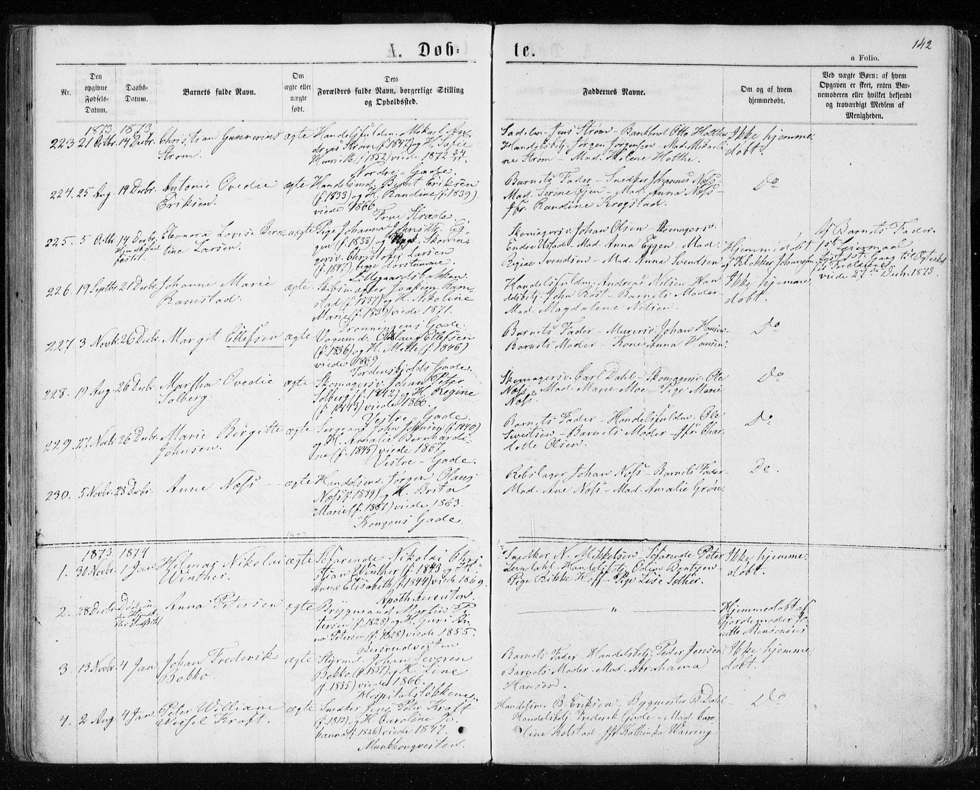 SAT, Ministerialprotokoller, klokkerbøker og fødselsregistre - Sør-Trøndelag, 601/L0054: Ministerialbok nr. 601A22, 1866-1877, s. 142