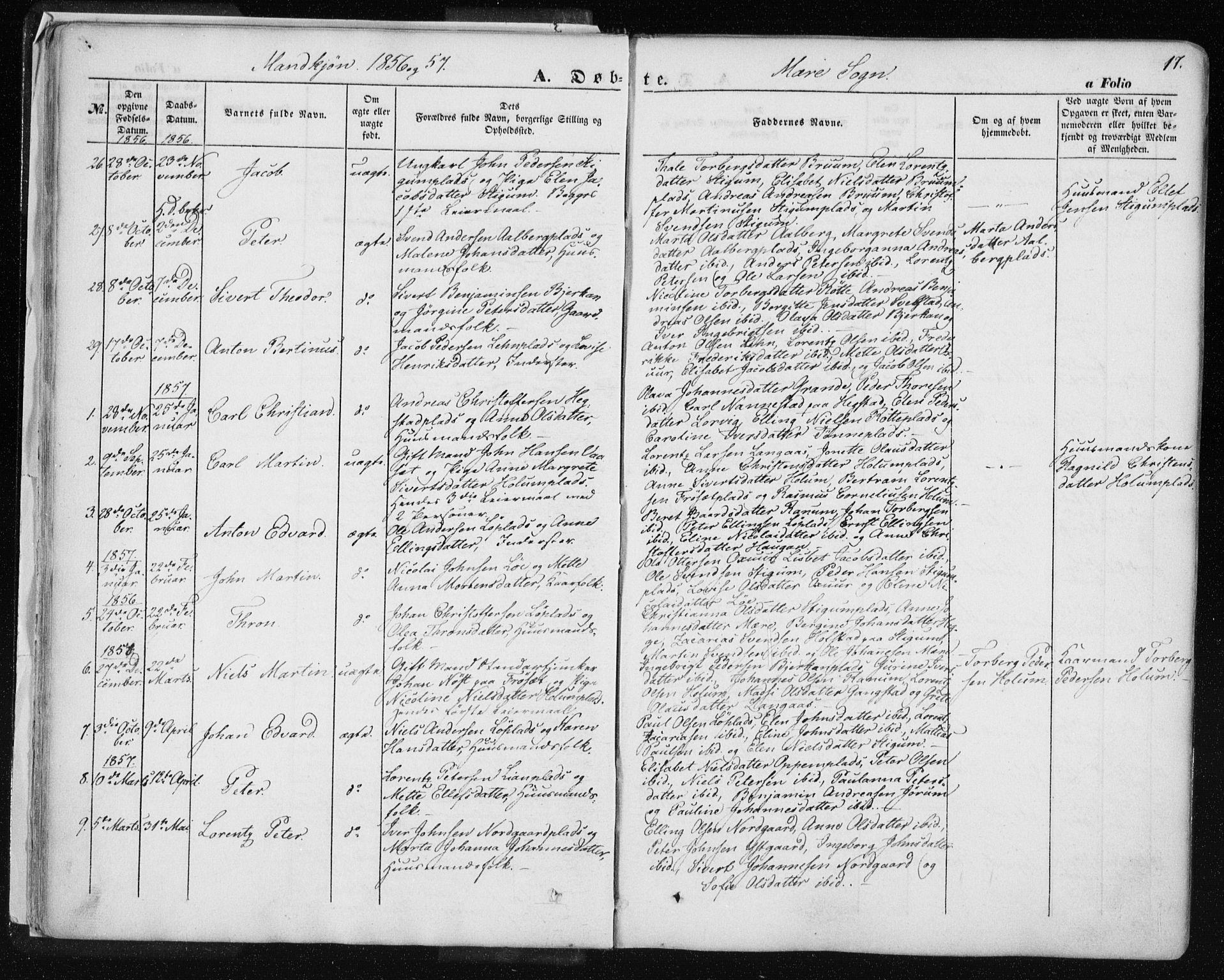SAT, Ministerialprotokoller, klokkerbøker og fødselsregistre - Nord-Trøndelag, 735/L0342: Ministerialbok nr. 735A07 /1, 1849-1862, s. 17