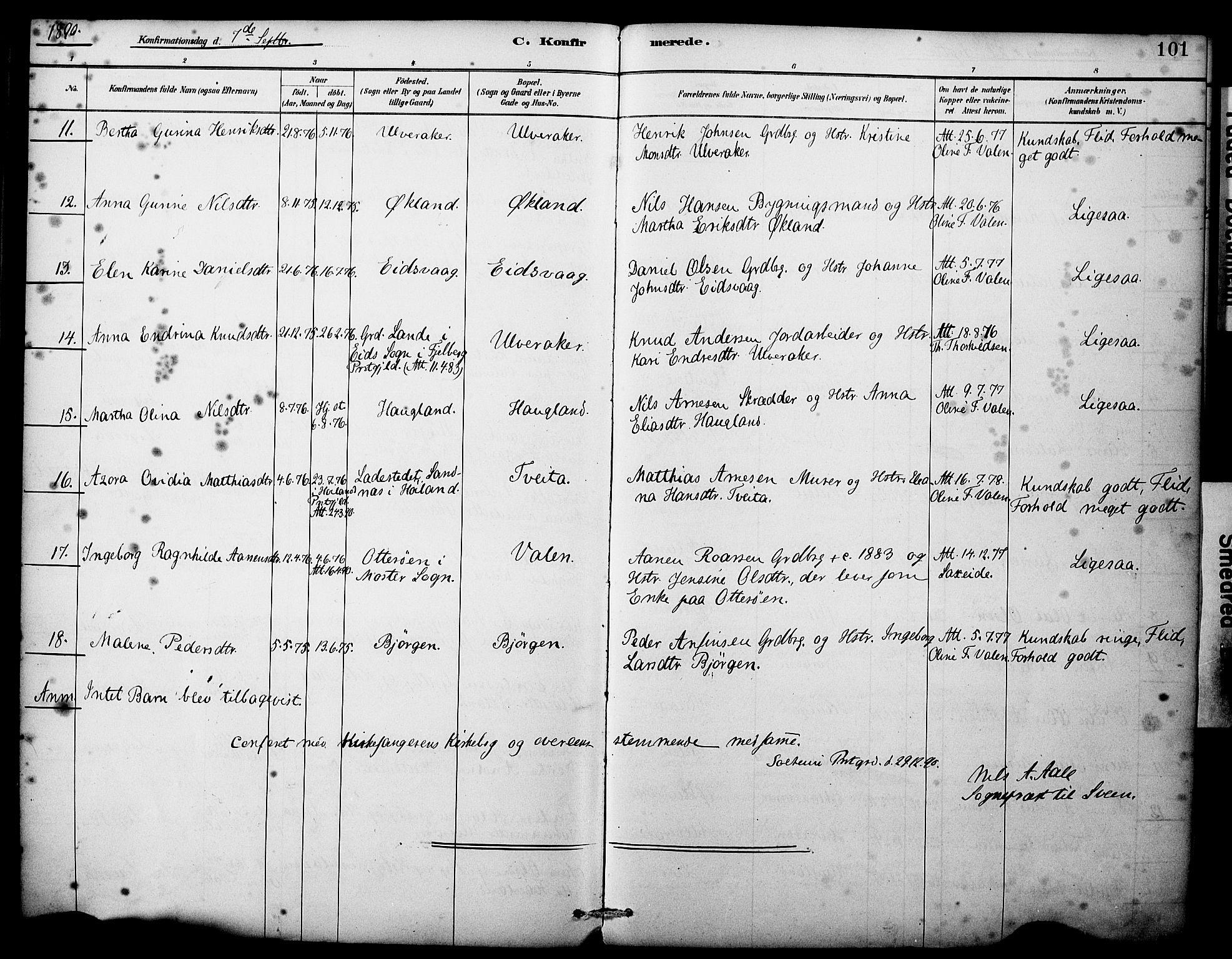 SAB, Sveio Sokneprestembete, H/Haa: Ministerialbok nr. C 2, 1881-1899, s. 101