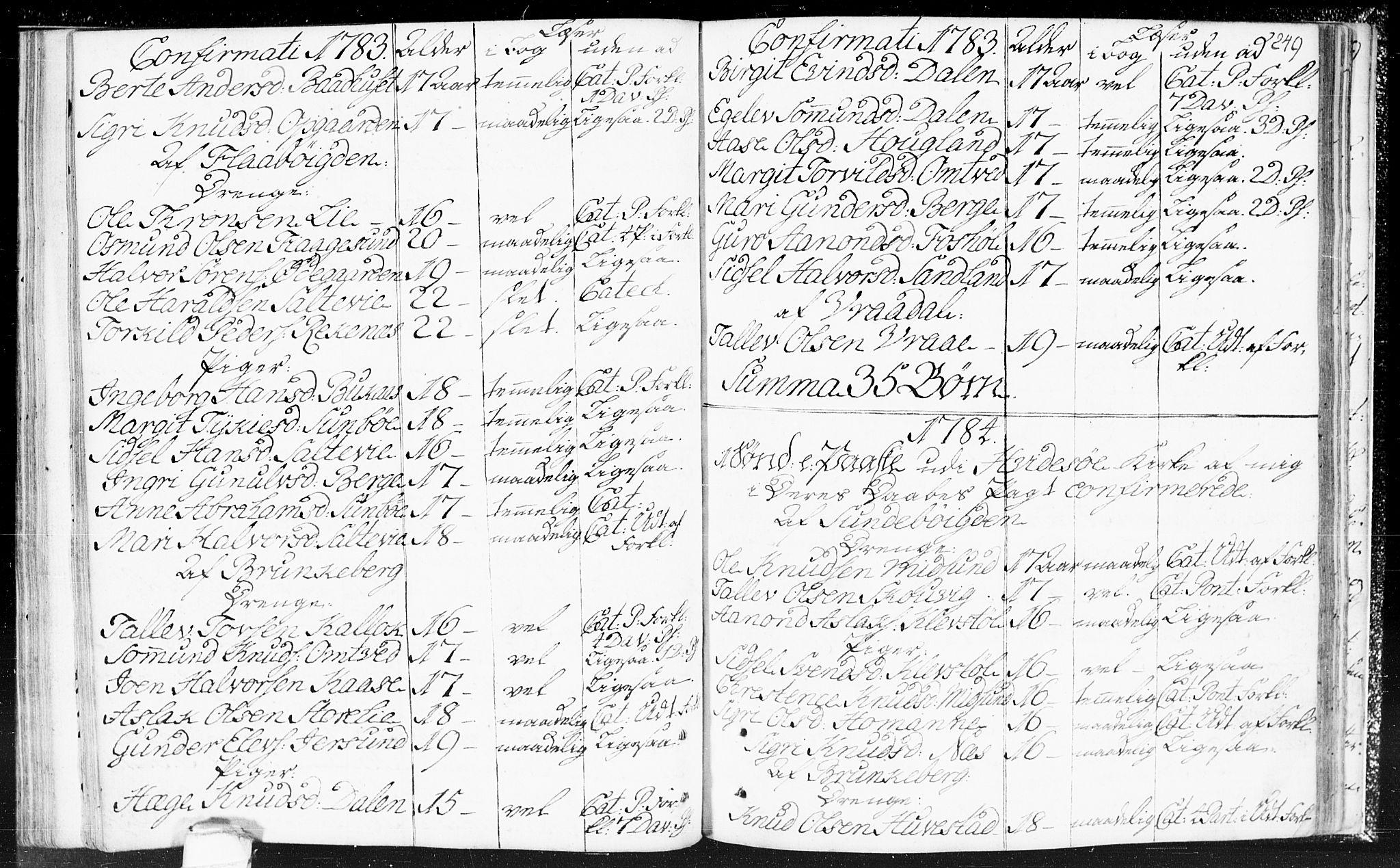SAKO, Kviteseid kirkebøker, F/Fa/L0002: Ministerialbok nr. I 2, 1773-1786, s. 249