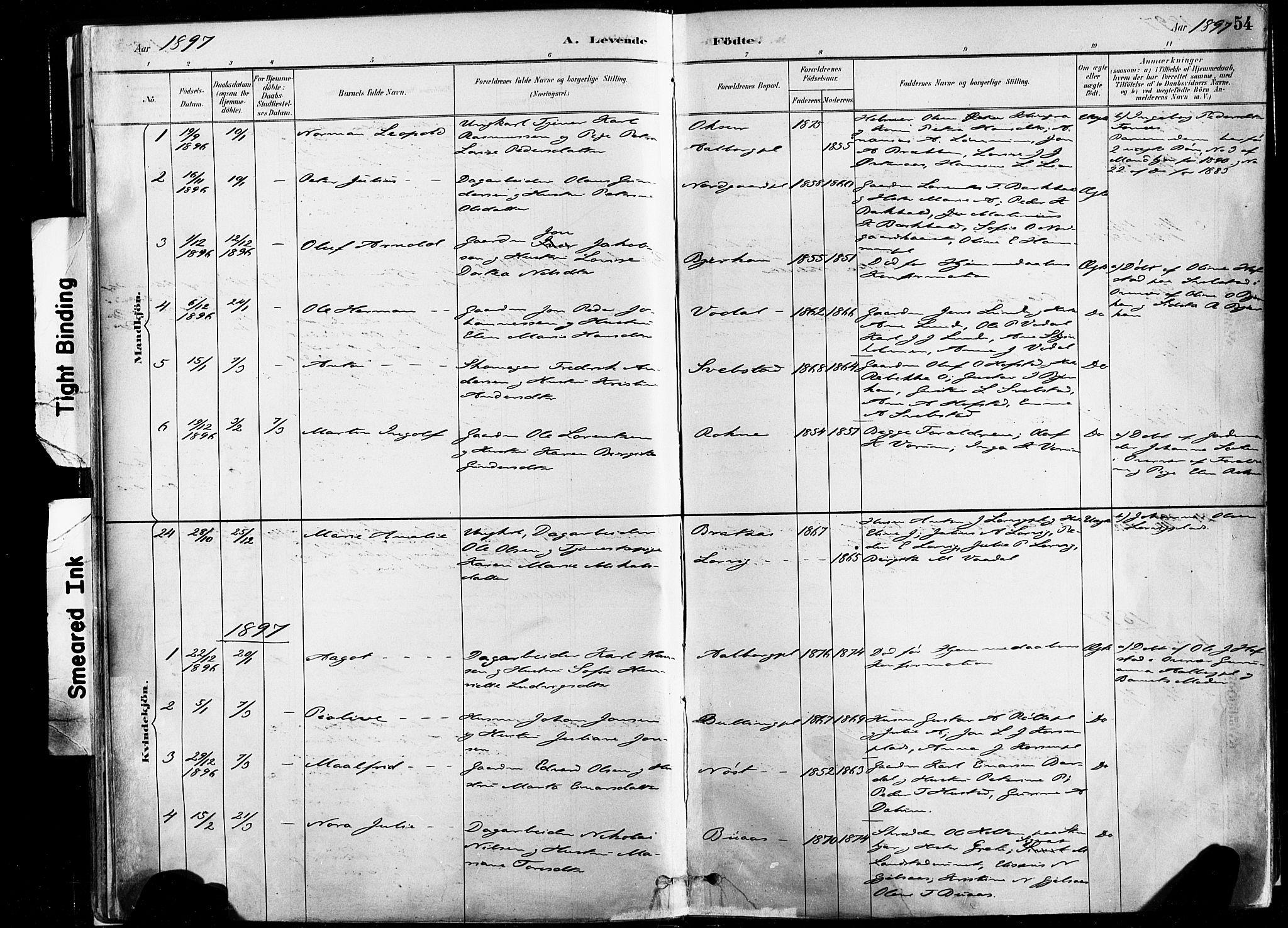SAT, Ministerialprotokoller, klokkerbøker og fødselsregistre - Nord-Trøndelag, 735/L0351: Ministerialbok nr. 735A10, 1884-1908, s. 54