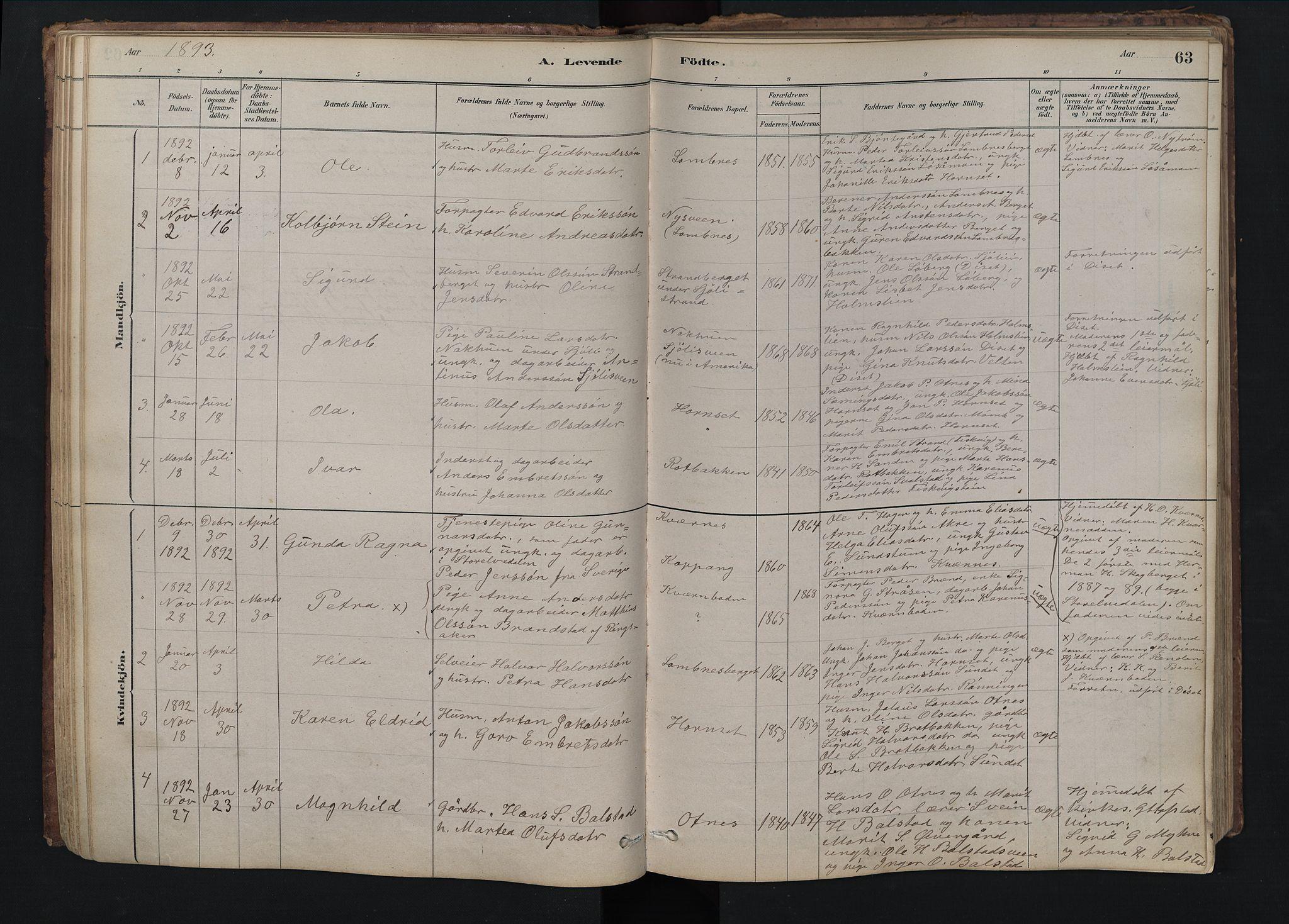 SAH, Rendalen prestekontor, H/Ha/Hab/L0009: Klokkerbok nr. 9, 1879-1902, s. 63