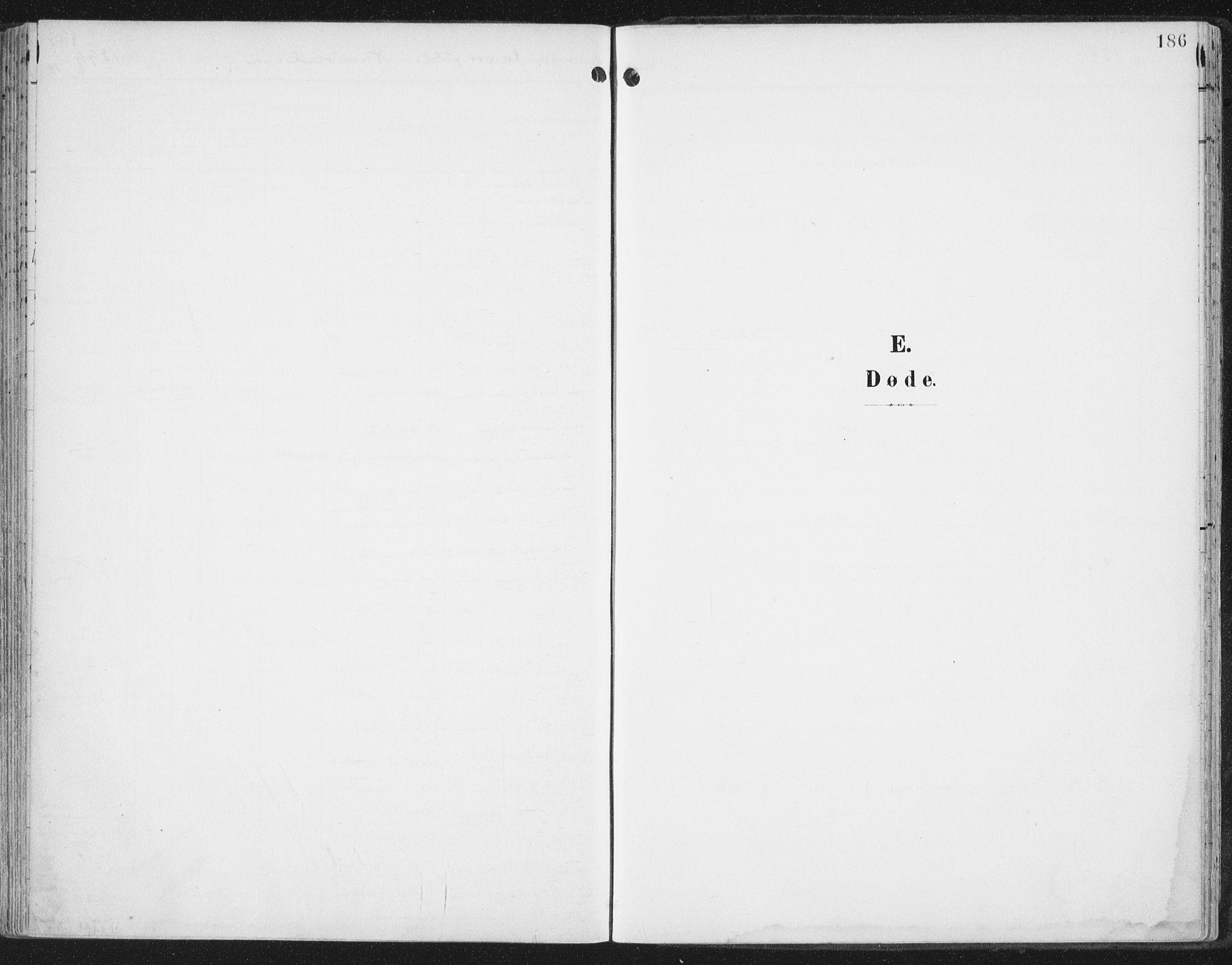 SAT, Ministerialprotokoller, klokkerbøker og fødselsregistre - Nord-Trøndelag, 786/L0688: Ministerialbok nr. 786A04, 1899-1912, s. 186
