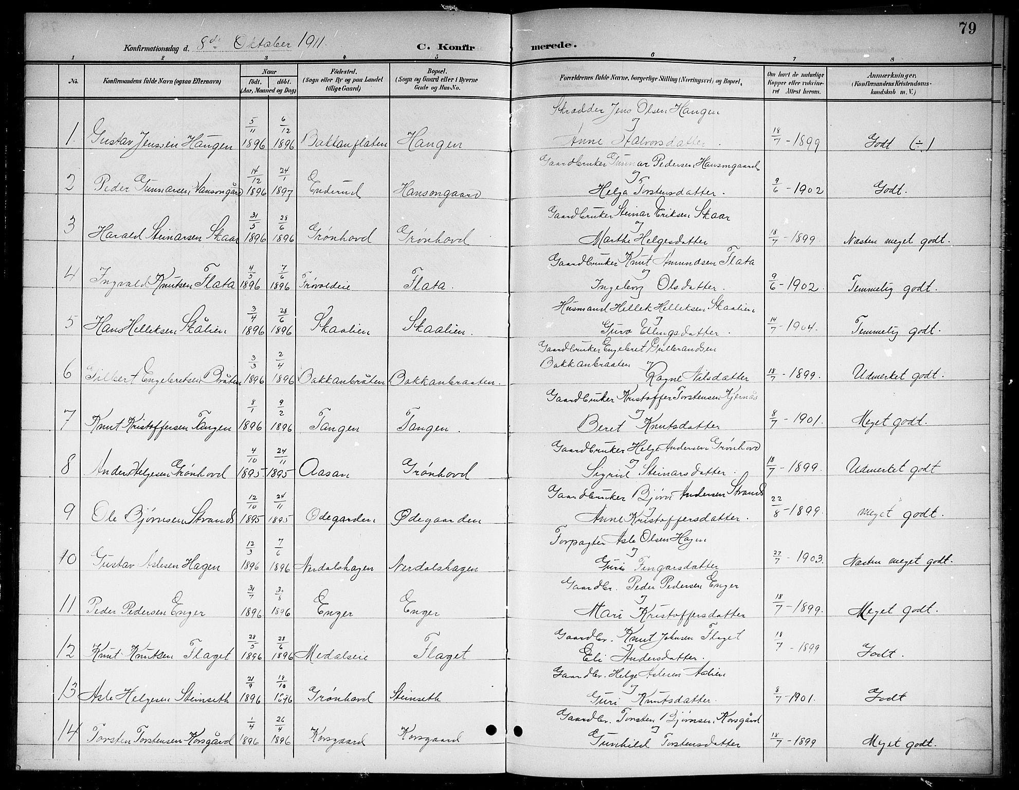 SAKO, Sigdal kirkebøker, G/Gb/L0003: Klokkerbok nr. II 3, 1901-1916, s. 79