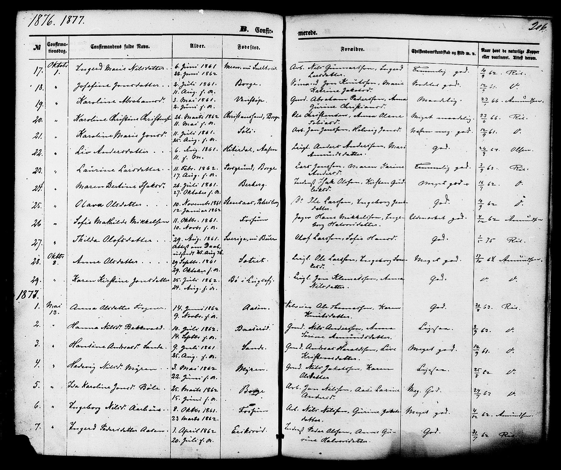 SAKO, Gjerpen kirkebøker, F/Fa/L0009: Ministerialbok nr. 9, 1872-1885, s. 206