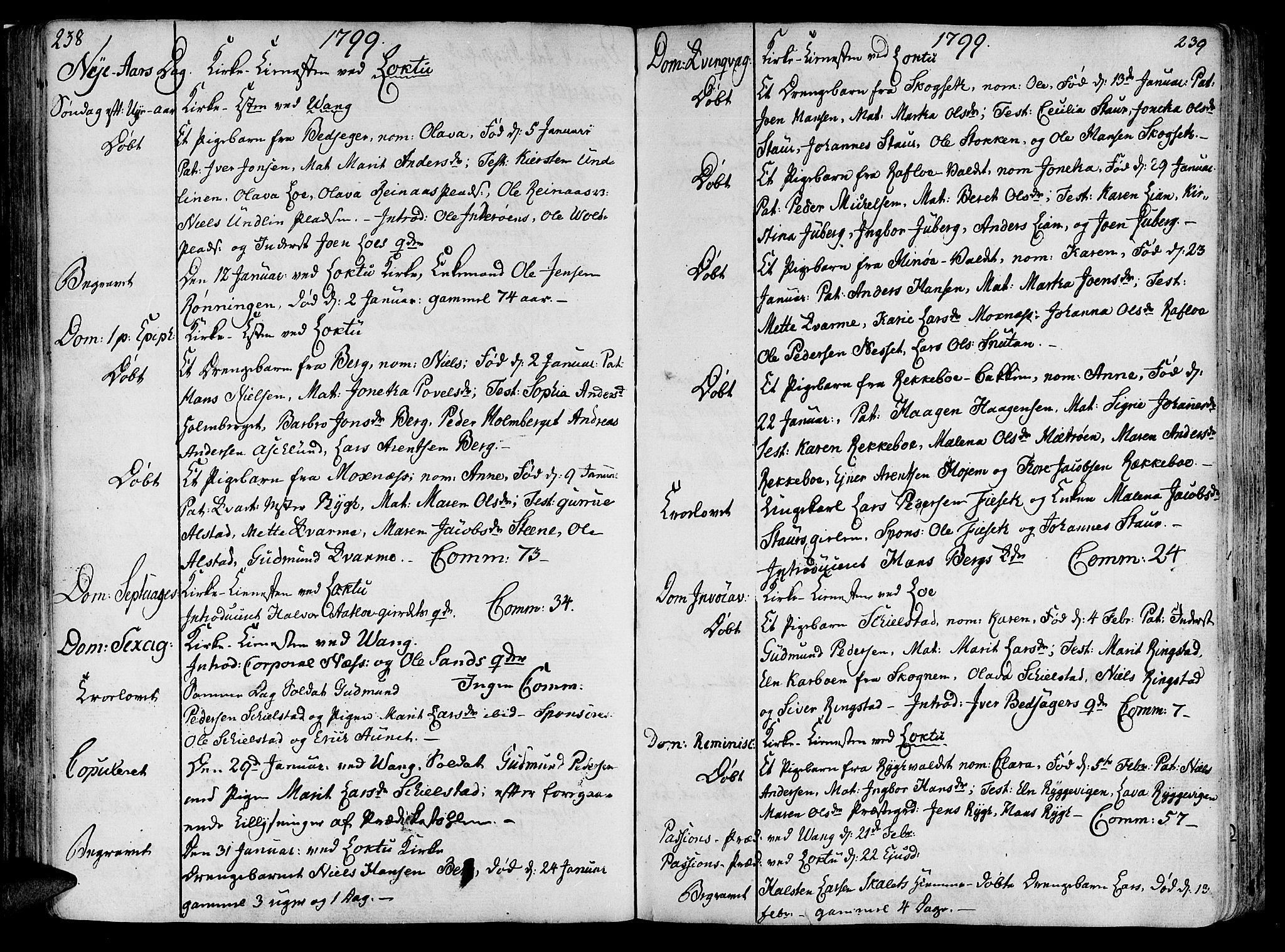 SAT, Ministerialprotokoller, klokkerbøker og fødselsregistre - Nord-Trøndelag, 713/L0110: Ministerialbok nr. 713A02, 1778-1811, s. 238-239