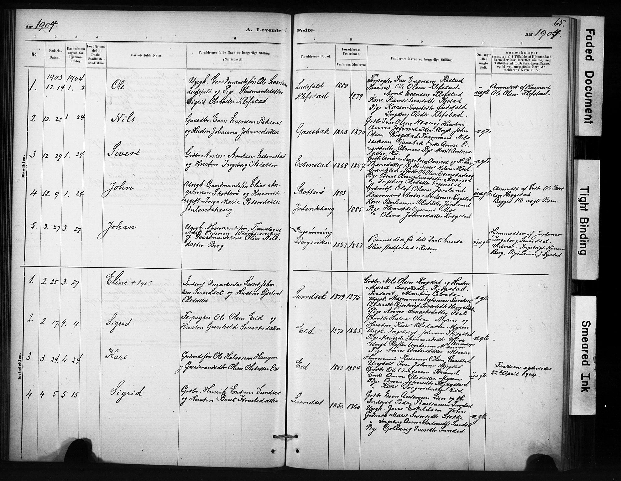 SAT, Ministerialprotokoller, klokkerbøker og fødselsregistre - Sør-Trøndelag, 694/L1127: Ministerialbok nr. 694A01, 1887-1905, s. 65