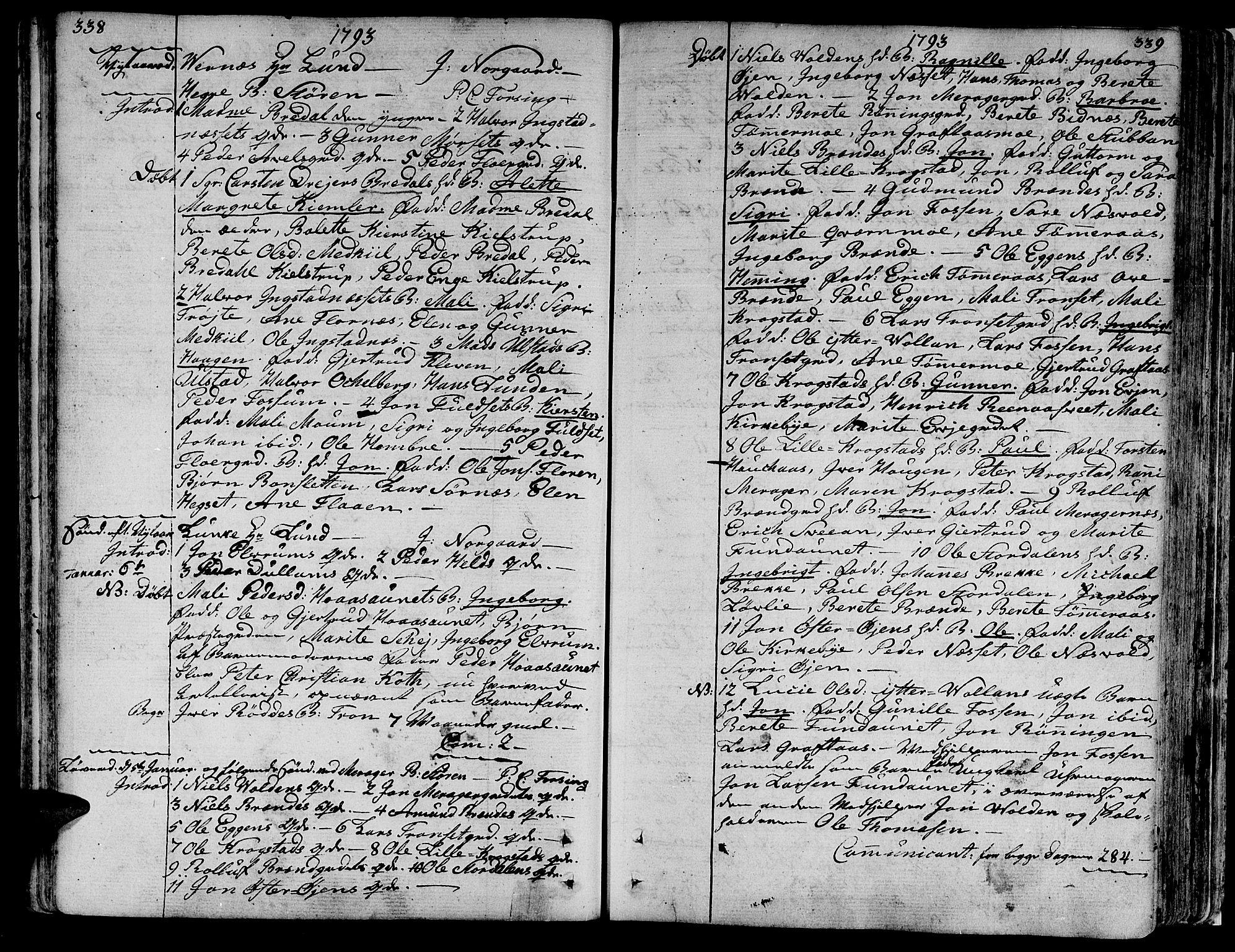SAT, Ministerialprotokoller, klokkerbøker og fødselsregistre - Nord-Trøndelag, 709/L0059: Ministerialbok nr. 709A06, 1781-1797, s. 338-339