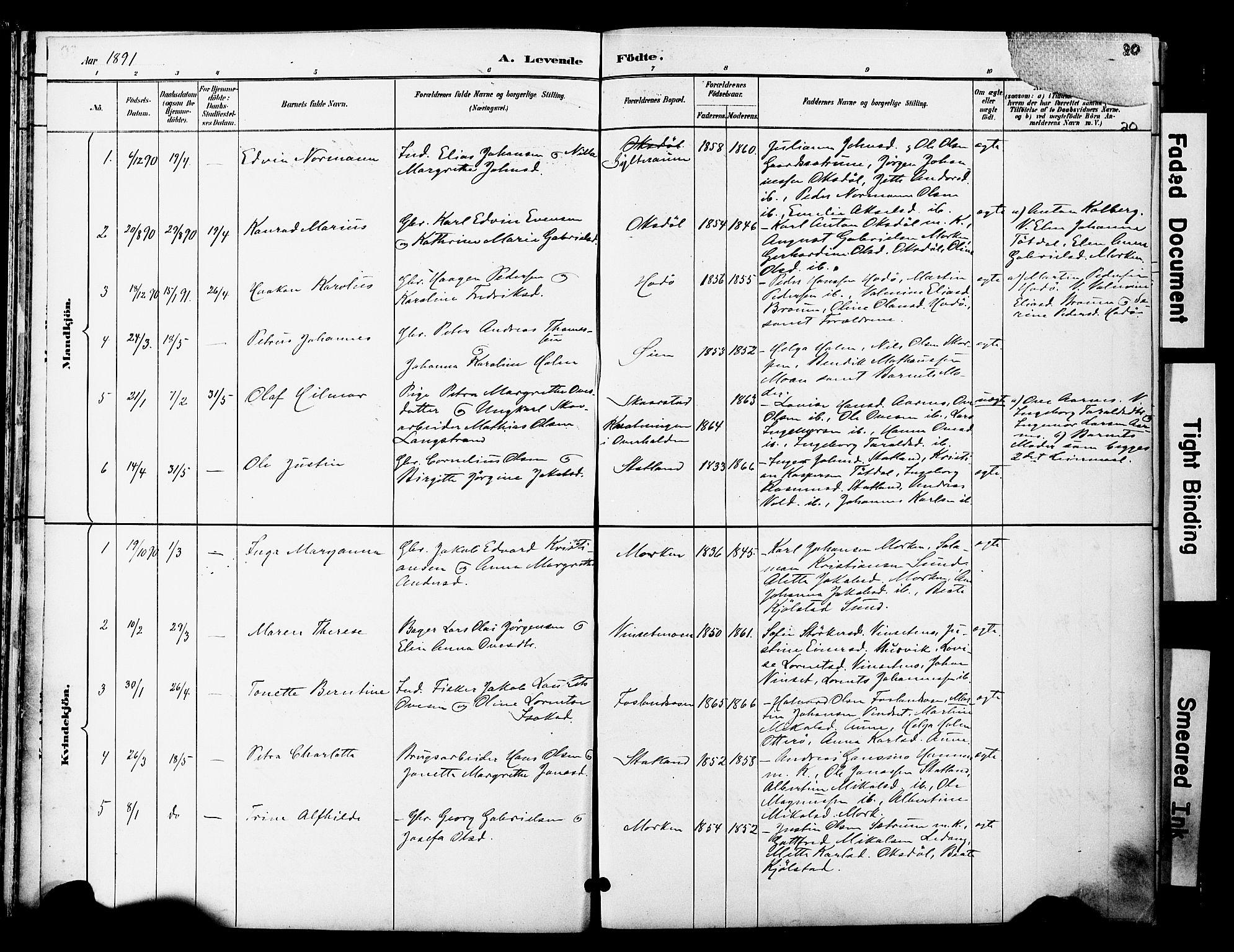 SAT, Ministerialprotokoller, klokkerbøker og fødselsregistre - Nord-Trøndelag, 774/L0628: Ministerialbok nr. 774A02, 1887-1903, s. 20