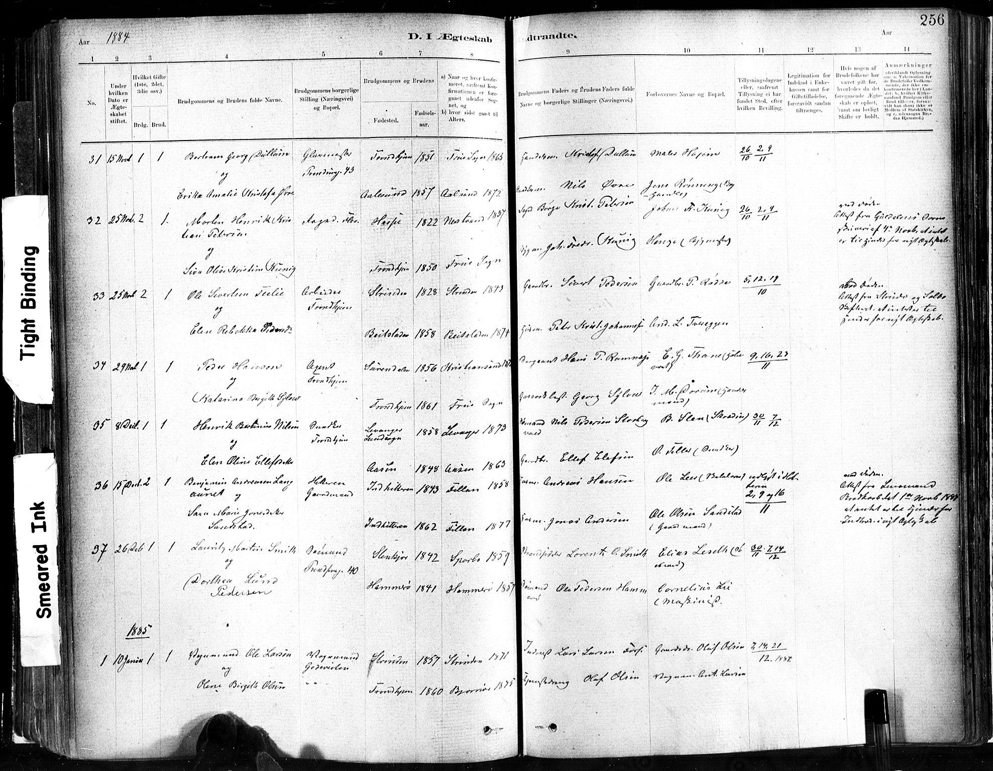SAT, Ministerialprotokoller, klokkerbøker og fødselsregistre - Sør-Trøndelag, 602/L0119: Ministerialbok nr. 602A17, 1880-1901, s. 256