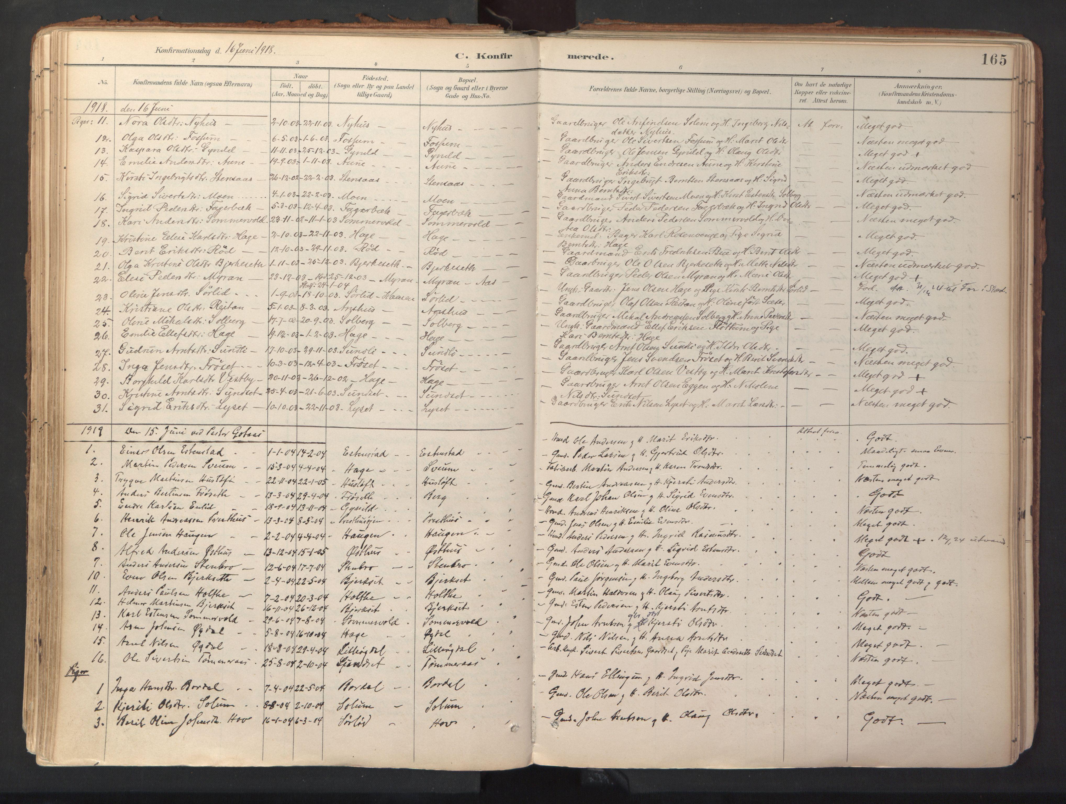 SAT, Ministerialprotokoller, klokkerbøker og fødselsregistre - Sør-Trøndelag, 689/L1041: Ministerialbok nr. 689A06, 1891-1923, s. 165