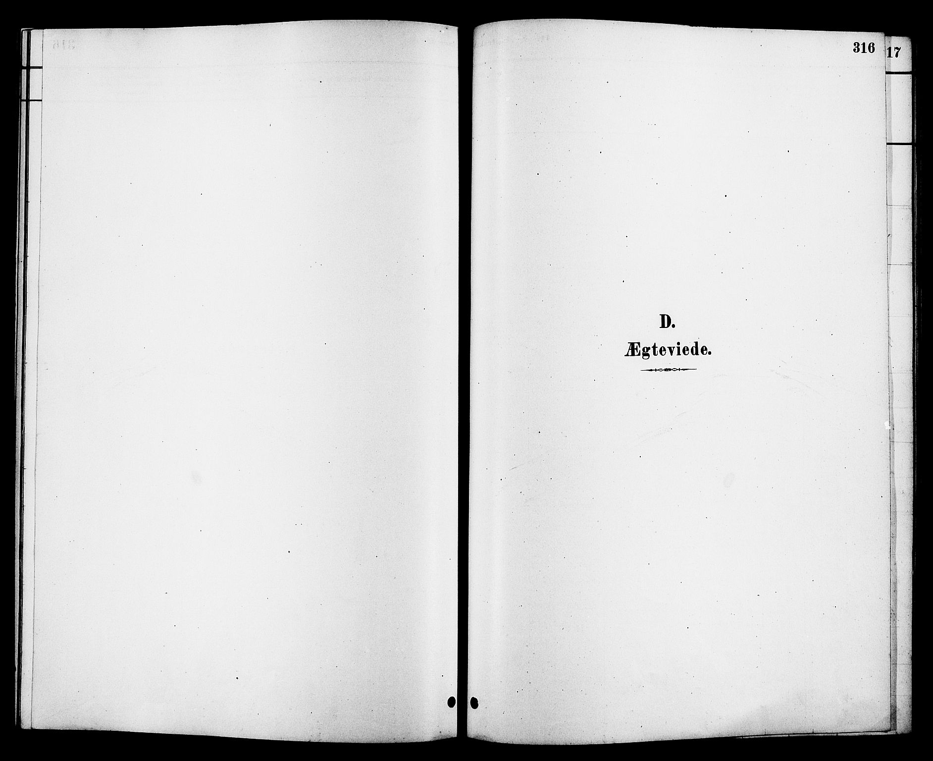 SAKO, Heddal kirkebøker, G/Ga/L0002: Klokkerbok nr. I 2, 1879-1908, s. 316