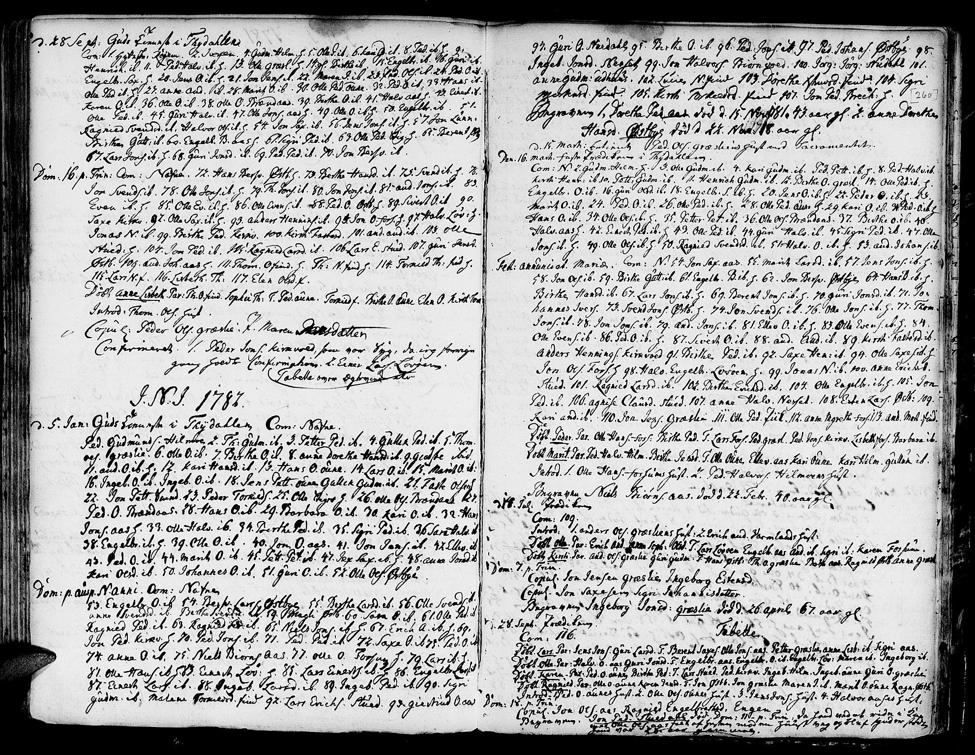 SAT, Ministerialprotokoller, klokkerbøker og fødselsregistre - Sør-Trøndelag, 695/L1139: Ministerialbok nr. 695A02 /2, 1776-1790, s. 260