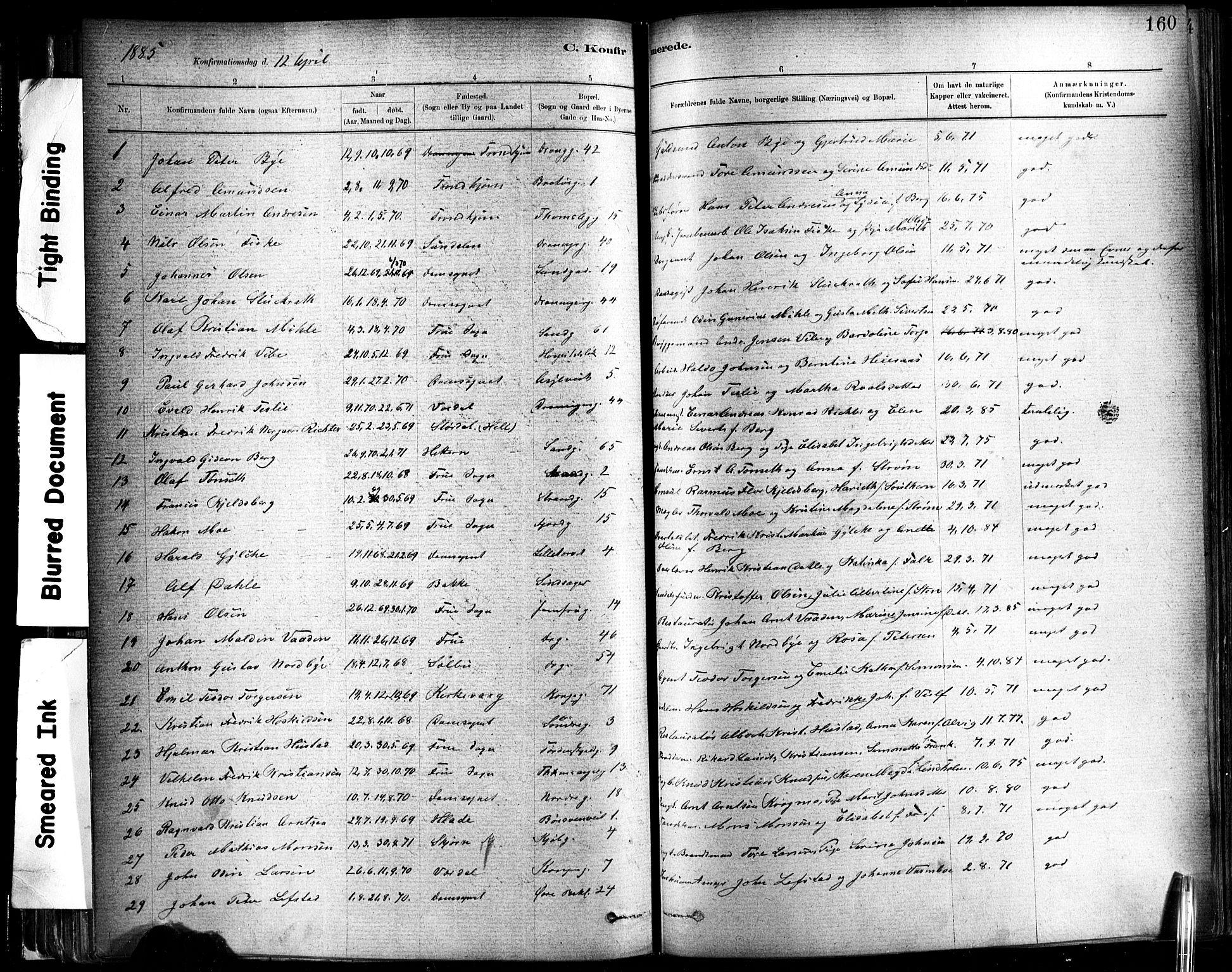 SAT, Ministerialprotokoller, klokkerbøker og fødselsregistre - Sør-Trøndelag, 602/L0119: Ministerialbok nr. 602A17, 1880-1901, s. 160