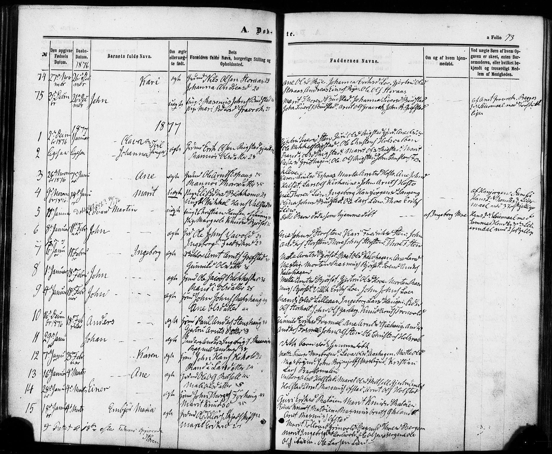 SAT, Ministerialprotokoller, klokkerbøker og fødselsregistre - Sør-Trøndelag, 672/L0856: Ministerialbok nr. 672A08, 1861-1881, s. 73