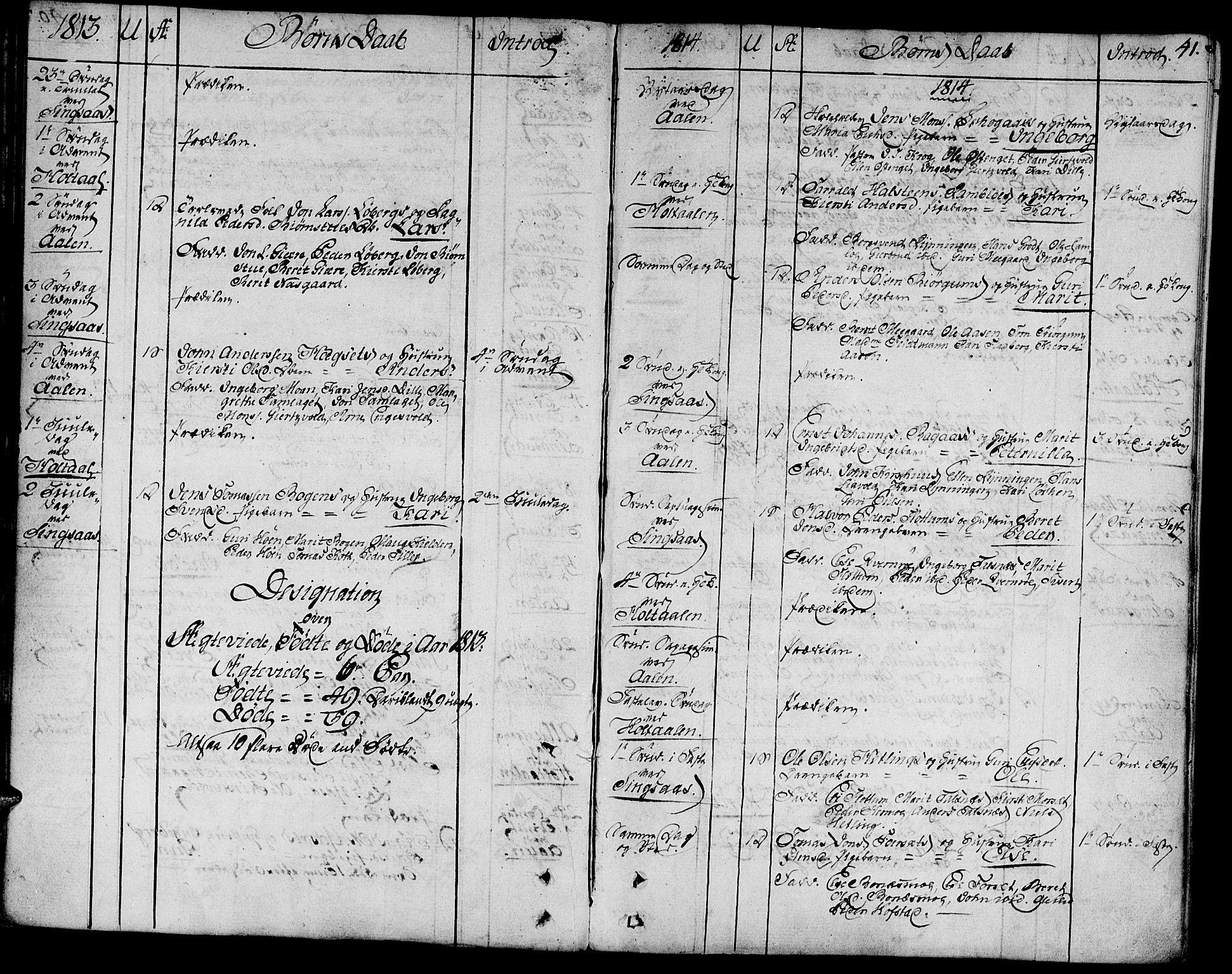 SAT, Ministerialprotokoller, klokkerbøker og fødselsregistre - Sør-Trøndelag, 685/L0953: Ministerialbok nr. 685A02, 1805-1816, s. 41