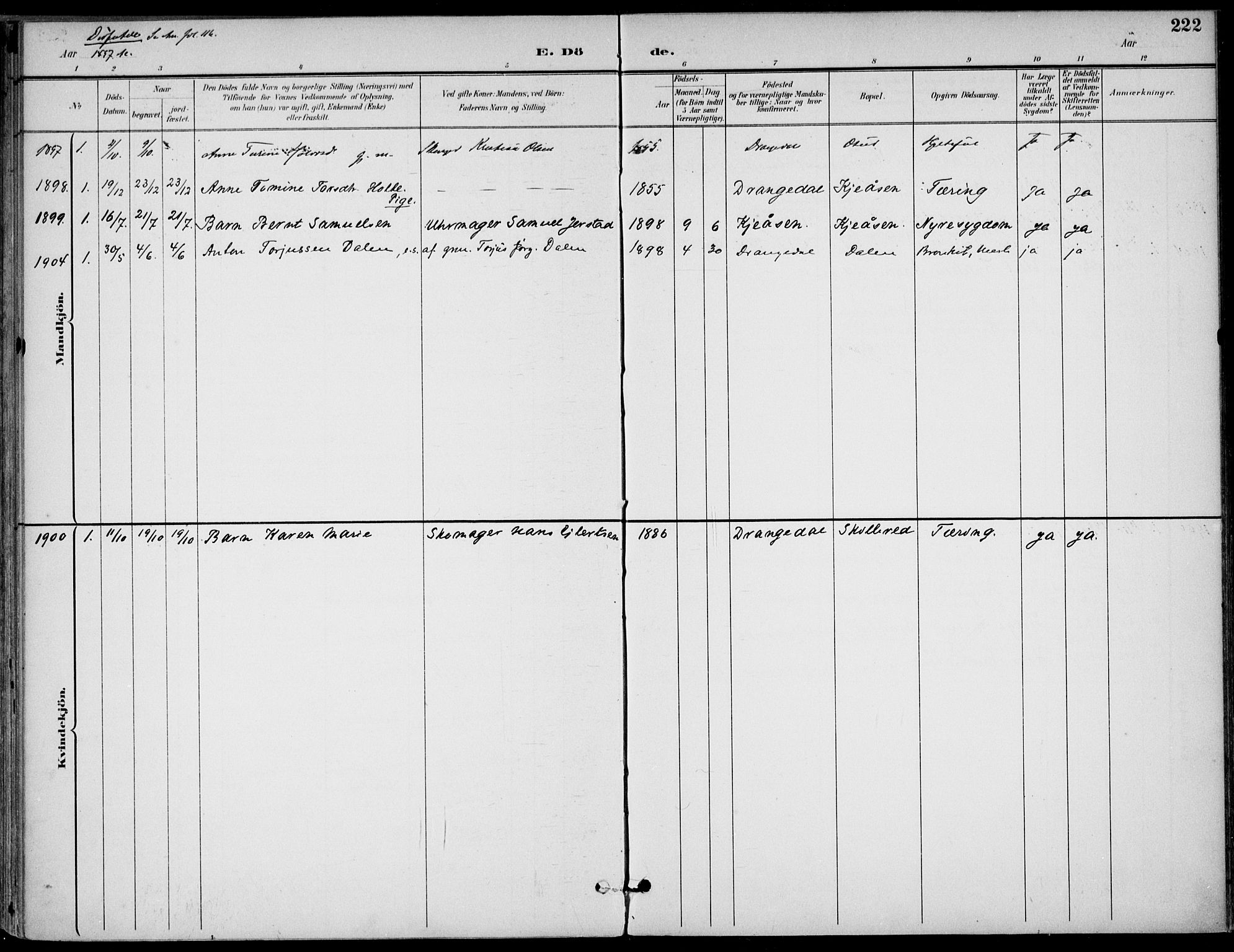 SAKO, Drangedal kirkebøker, F/Fa/L0012: Ministerialbok nr. 12, 1895-1905, s. 222