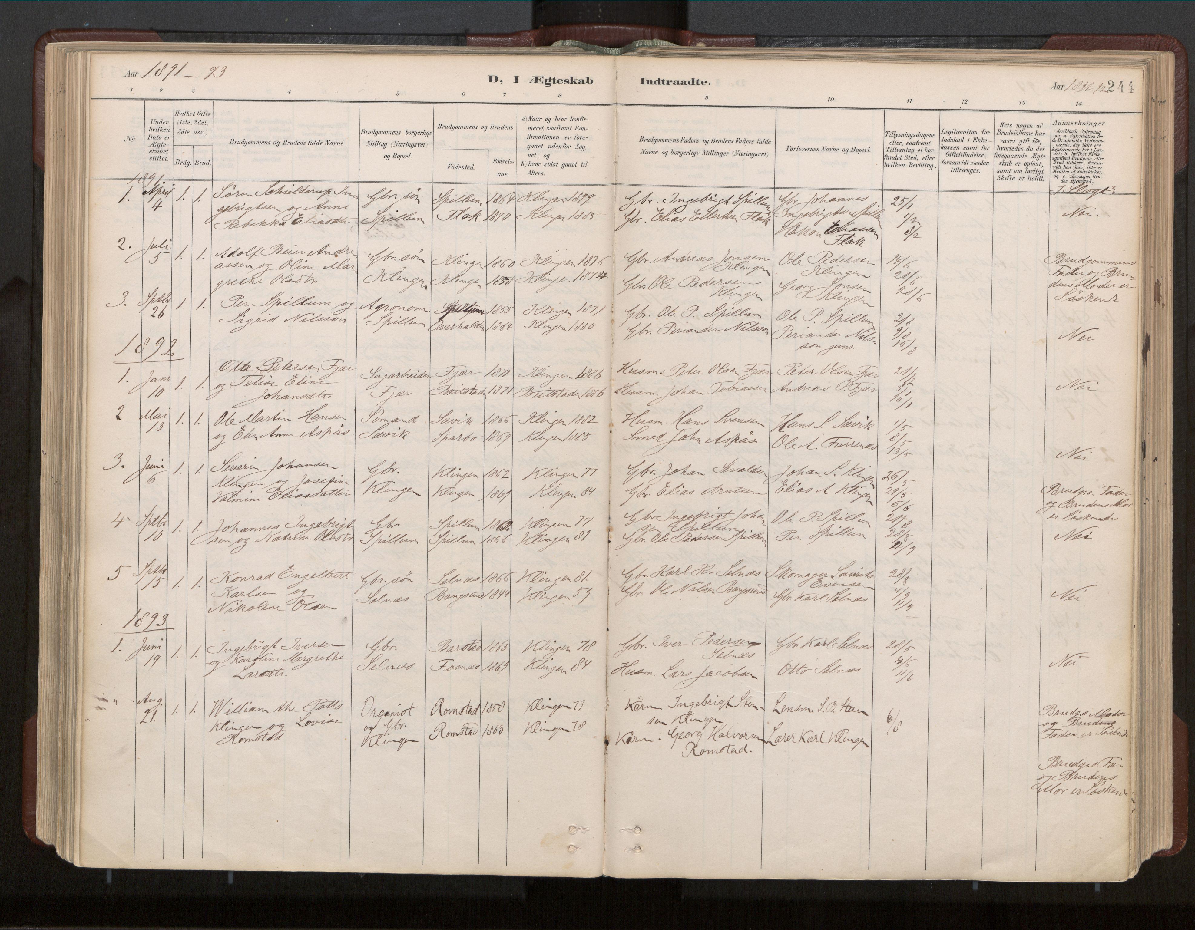 SAT, Ministerialprotokoller, klokkerbøker og fødselsregistre - Nord-Trøndelag, 770/L0589: Ministerialbok nr. 770A03, 1887-1929, s. 244