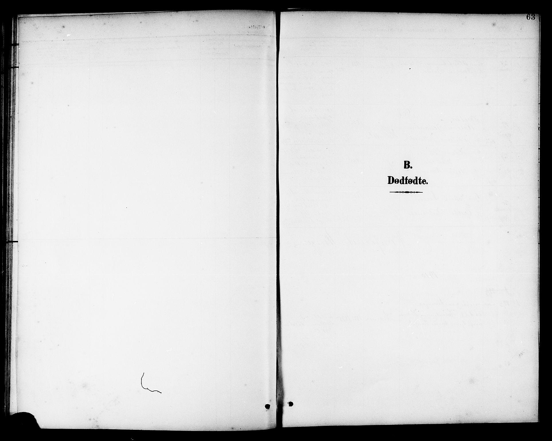 SAT, Ministerialprotokoller, klokkerbøker og fødselsregistre - Nord-Trøndelag, 741/L0401: Klokkerbok nr. 741C02, 1899-1911, s. 63