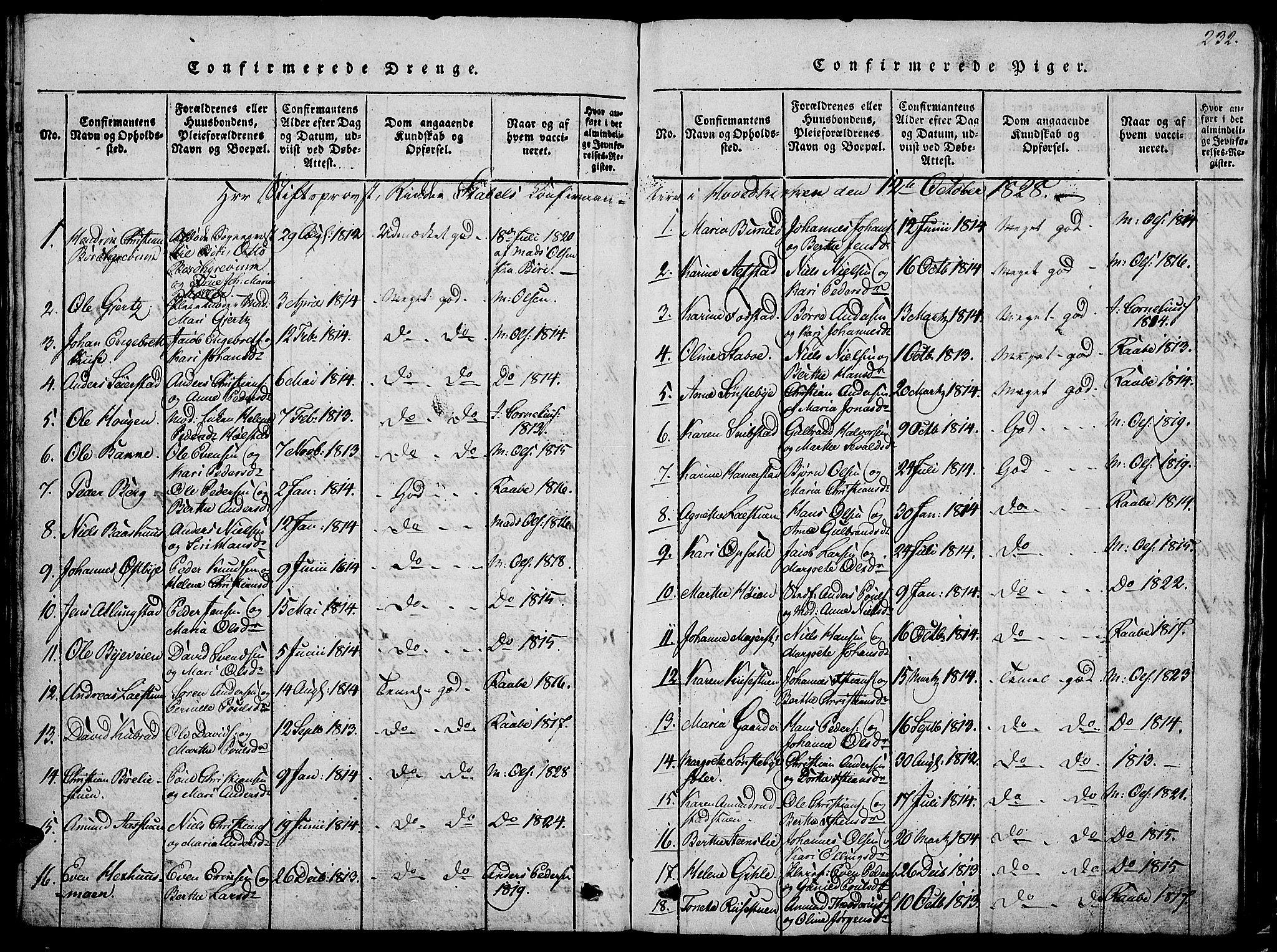 SAH, Østre Toten prestekontor, Klokkerbok nr. 1, 1827-1839, s. 232