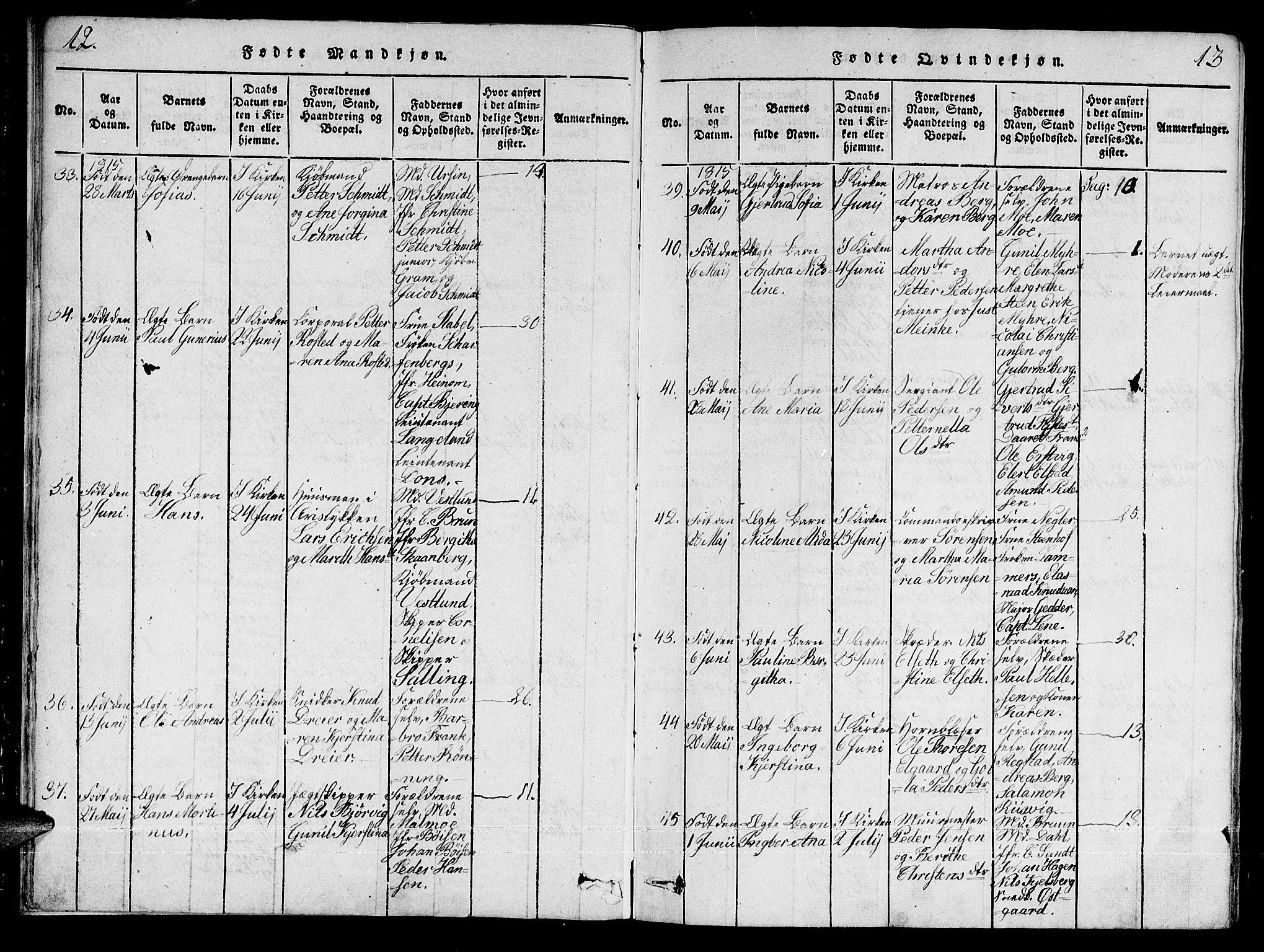SAT, Ministerialprotokoller, klokkerbøker og fødselsregistre - Sør-Trøndelag, 601/L0043: Ministerialbok nr. 601A11, 1815-1821, s. 12-13