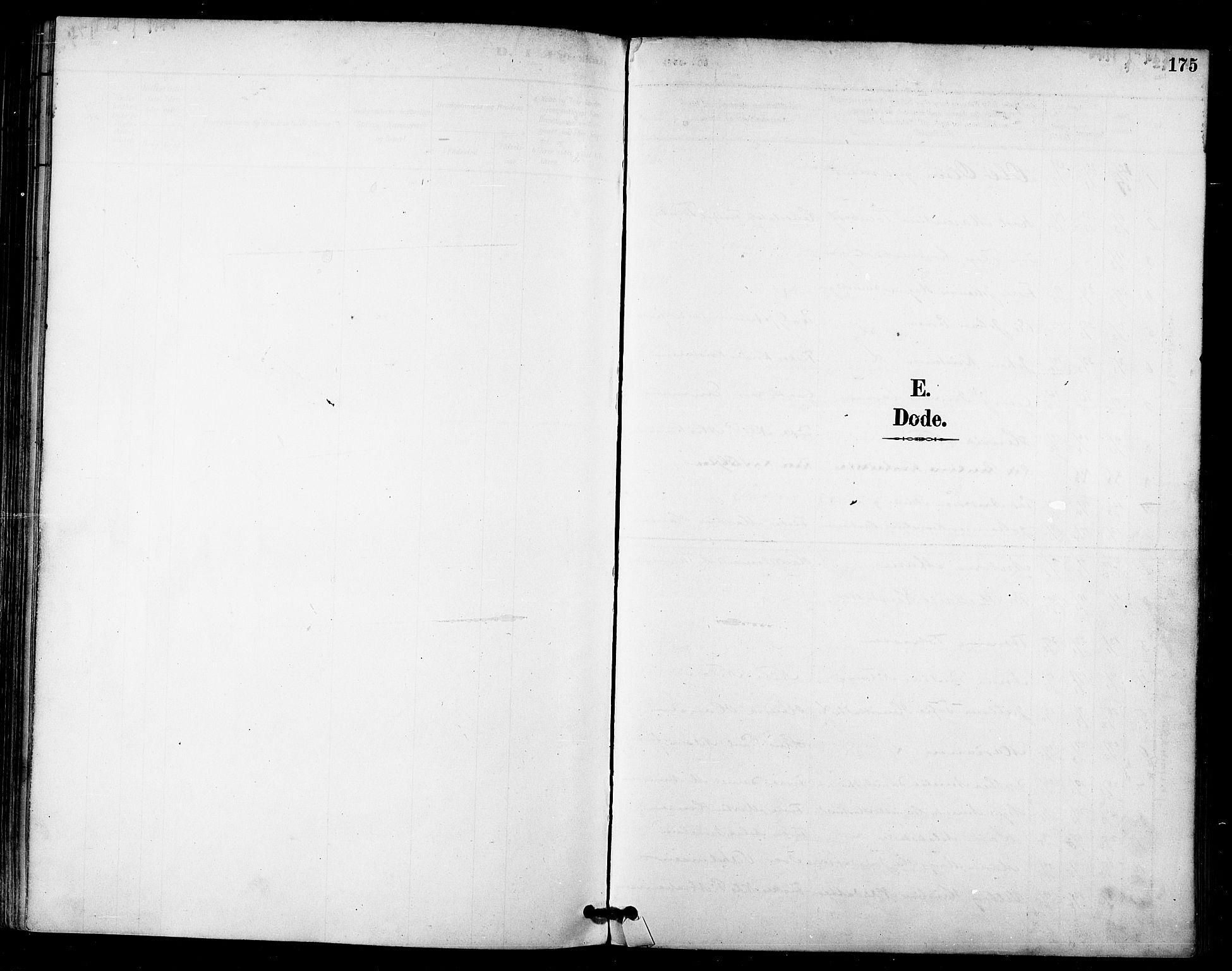 SATØ, Talvik sokneprestkontor, H/Ha/L0013kirke: Ministerialbok nr. 13, 1886-1897, s. 175