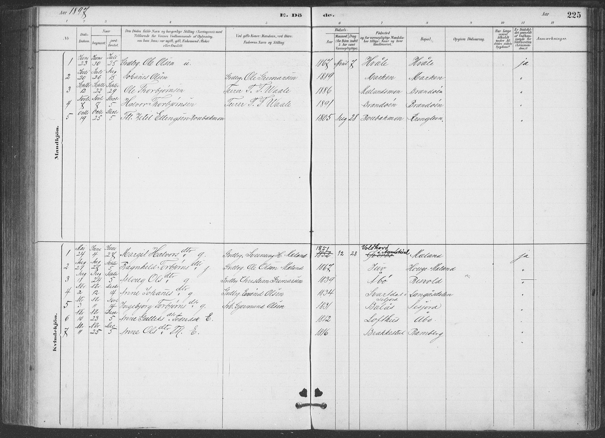 SAKO, Hjartdal kirkebøker, F/Fa/L0010: Ministerialbok nr. I 10, 1880-1929, s. 225