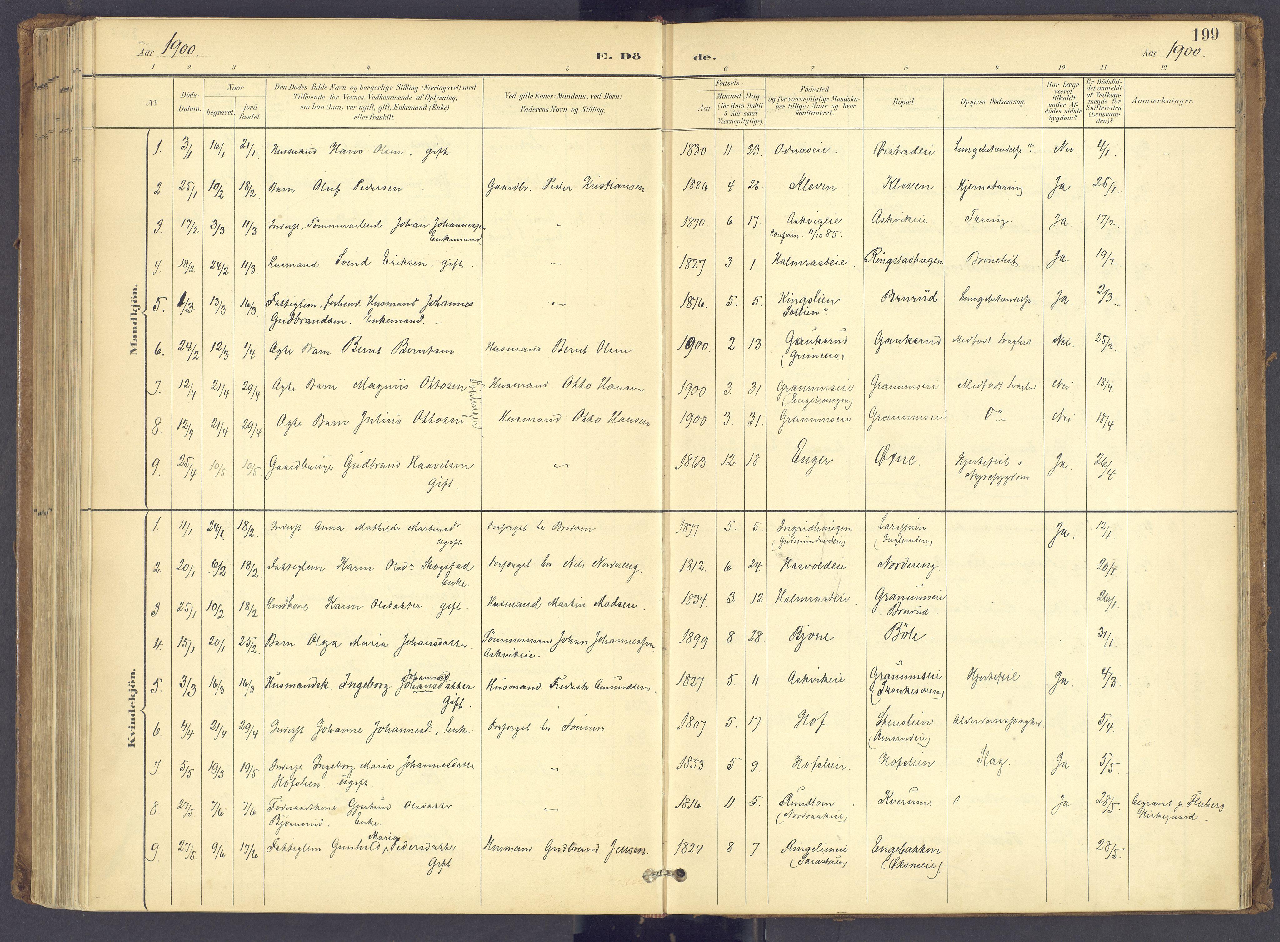 SAH, Søndre Land prestekontor, K/L0006: Ministerialbok nr. 6, 1895-1904, s. 199