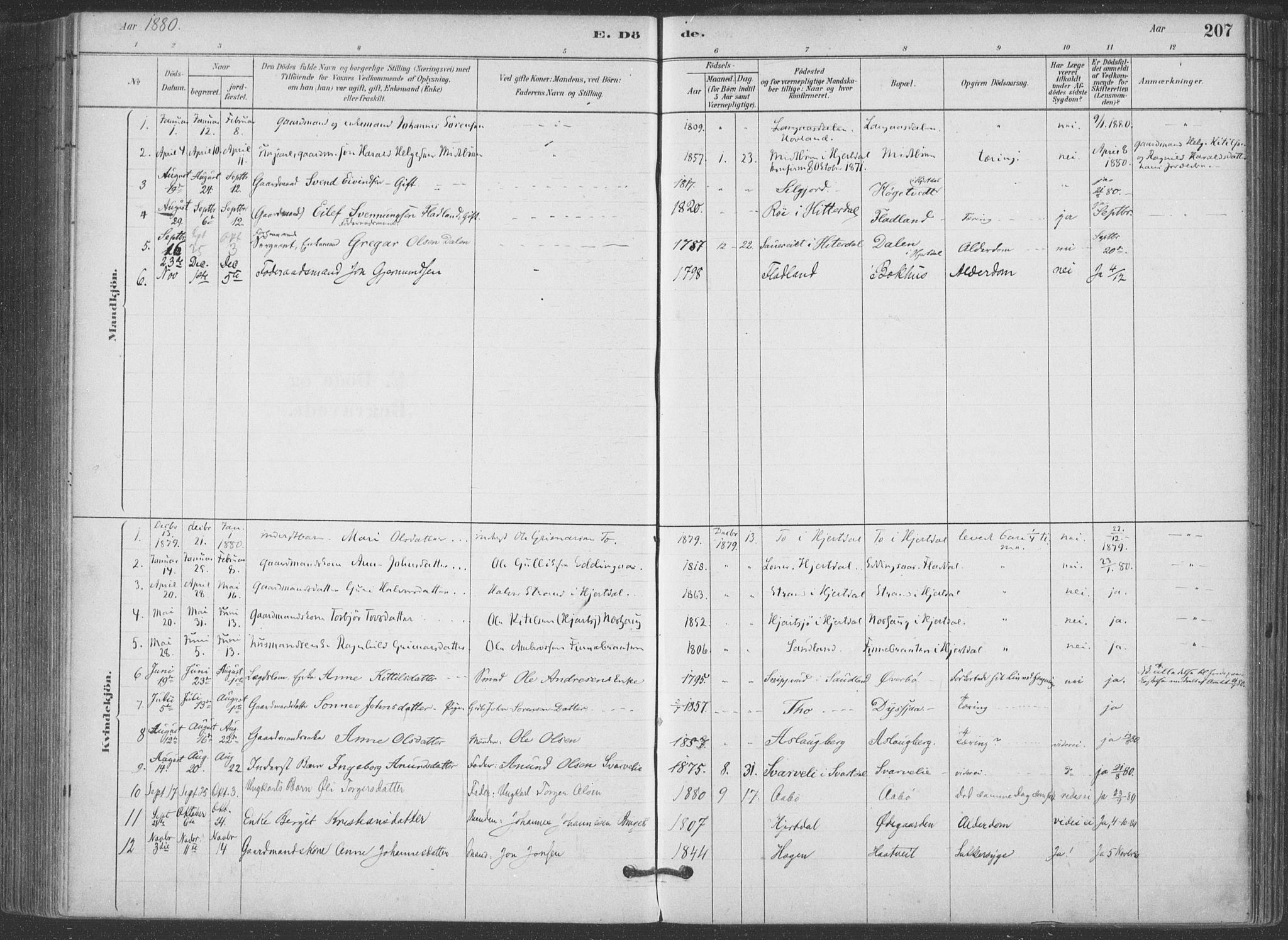 SAKO, Hjartdal kirkebøker, F/Fa/L0010: Ministerialbok nr. I 10, 1880-1929, s. 207