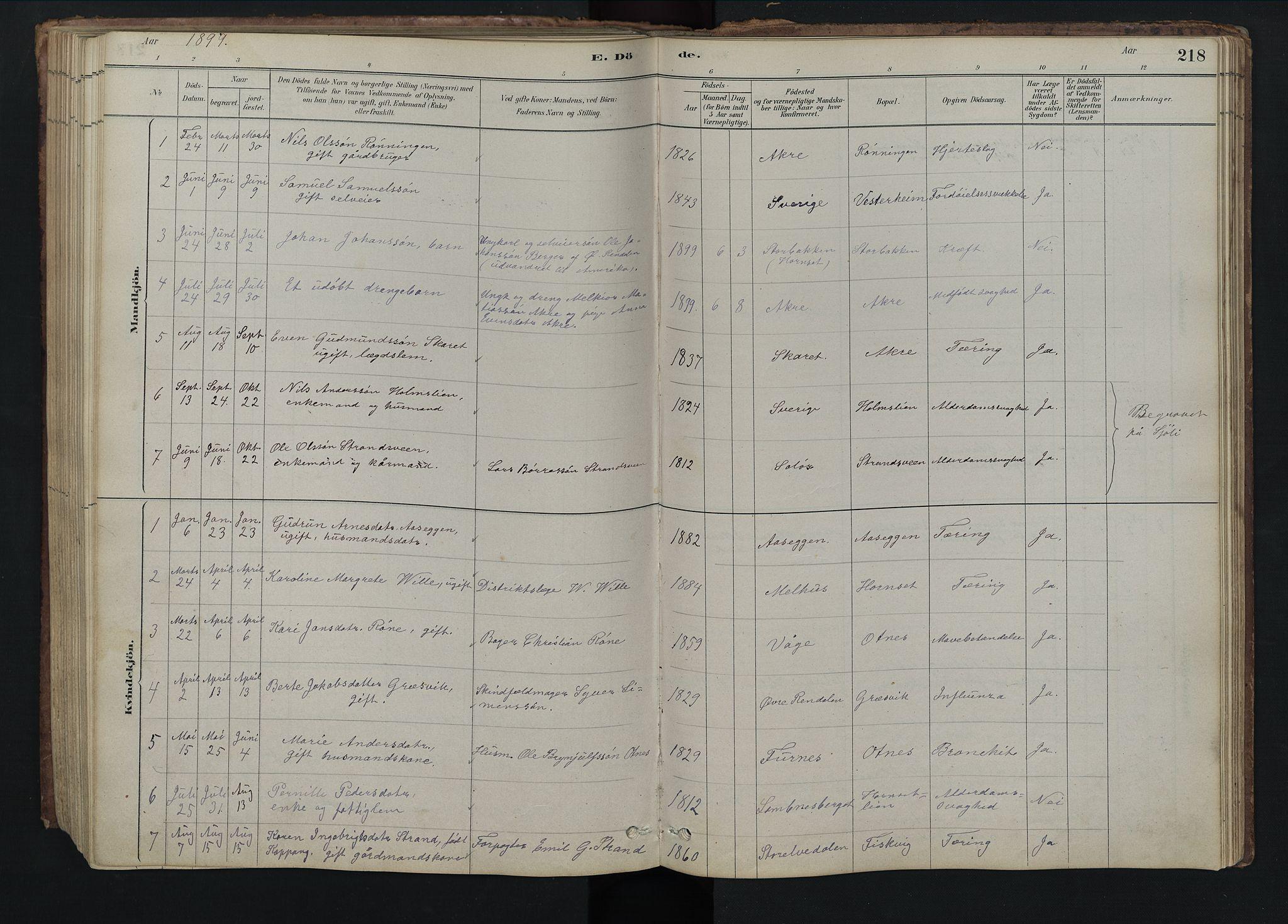 SAH, Rendalen prestekontor, H/Ha/Hab/L0009: Klokkerbok nr. 9, 1879-1902, s. 218