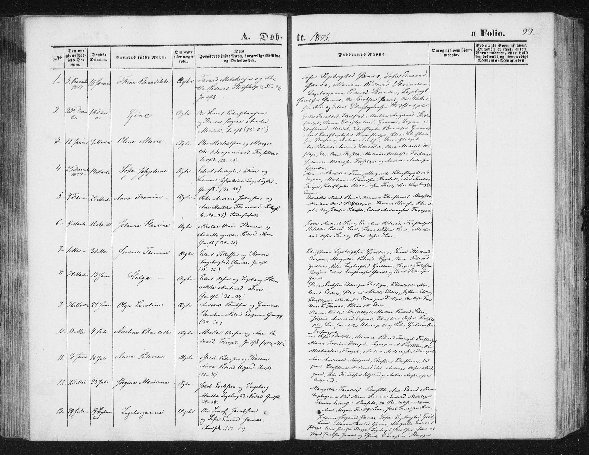 SAT, Ministerialprotokoller, klokkerbøker og fødselsregistre - Nord-Trøndelag, 746/L0447: Ministerialbok nr. 746A06, 1860-1877, s. 99