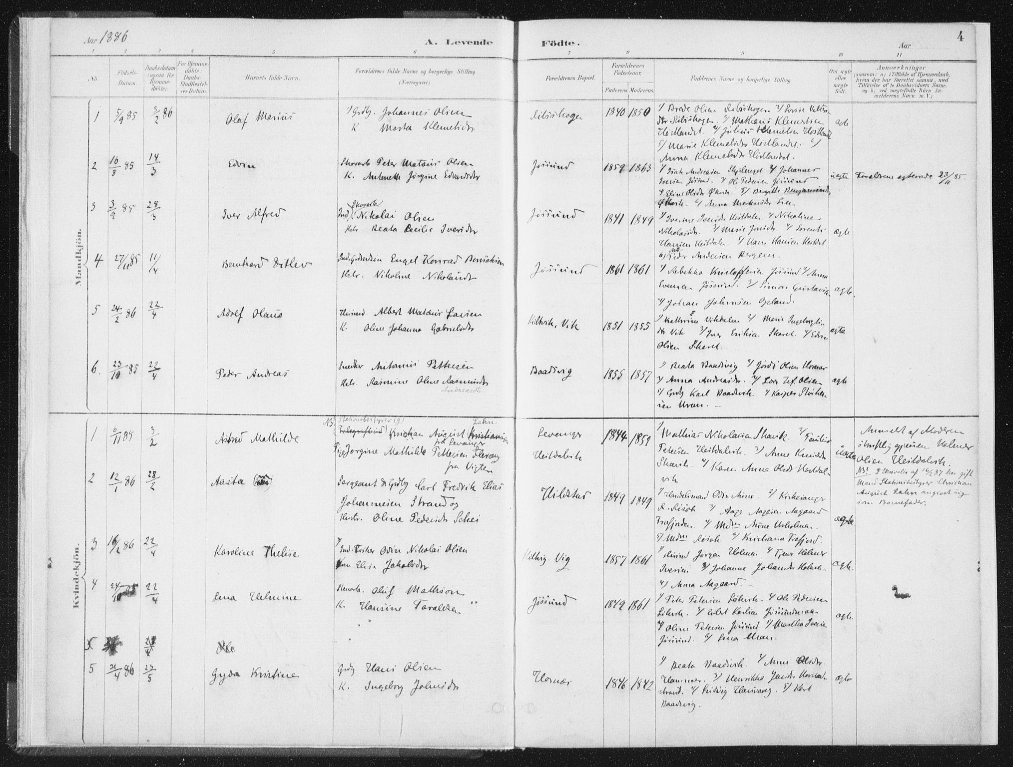 SAT, Ministerialprotokoller, klokkerbøker og fødselsregistre - Nord-Trøndelag, 771/L0597: Ministerialbok nr. 771A04, 1885-1910, s. 4