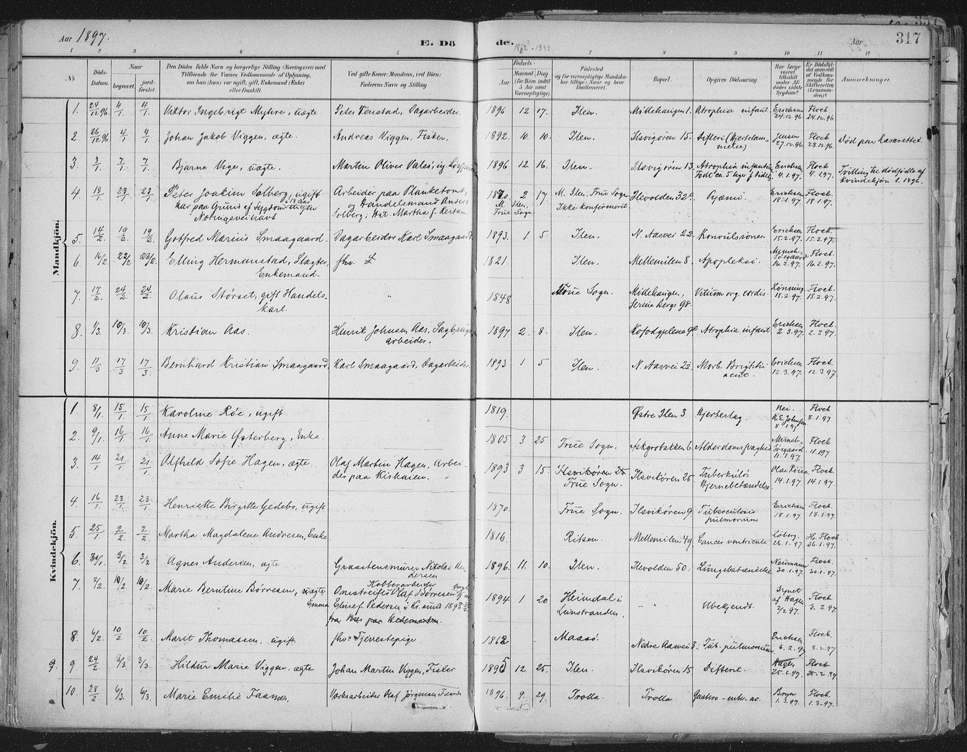 SAT, Ministerialprotokoller, klokkerbøker og fødselsregistre - Sør-Trøndelag, 603/L0167: Ministerialbok nr. 603A06, 1896-1932, s. 317