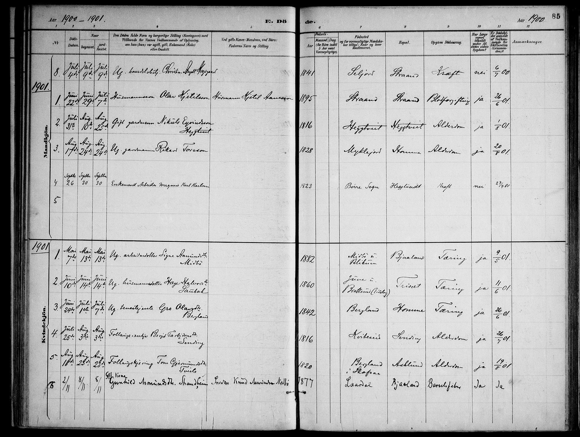 SAKO, Lårdal kirkebøker, F/Fa/L0007: Ministerialbok nr. I 7, 1887-1906, s. 85