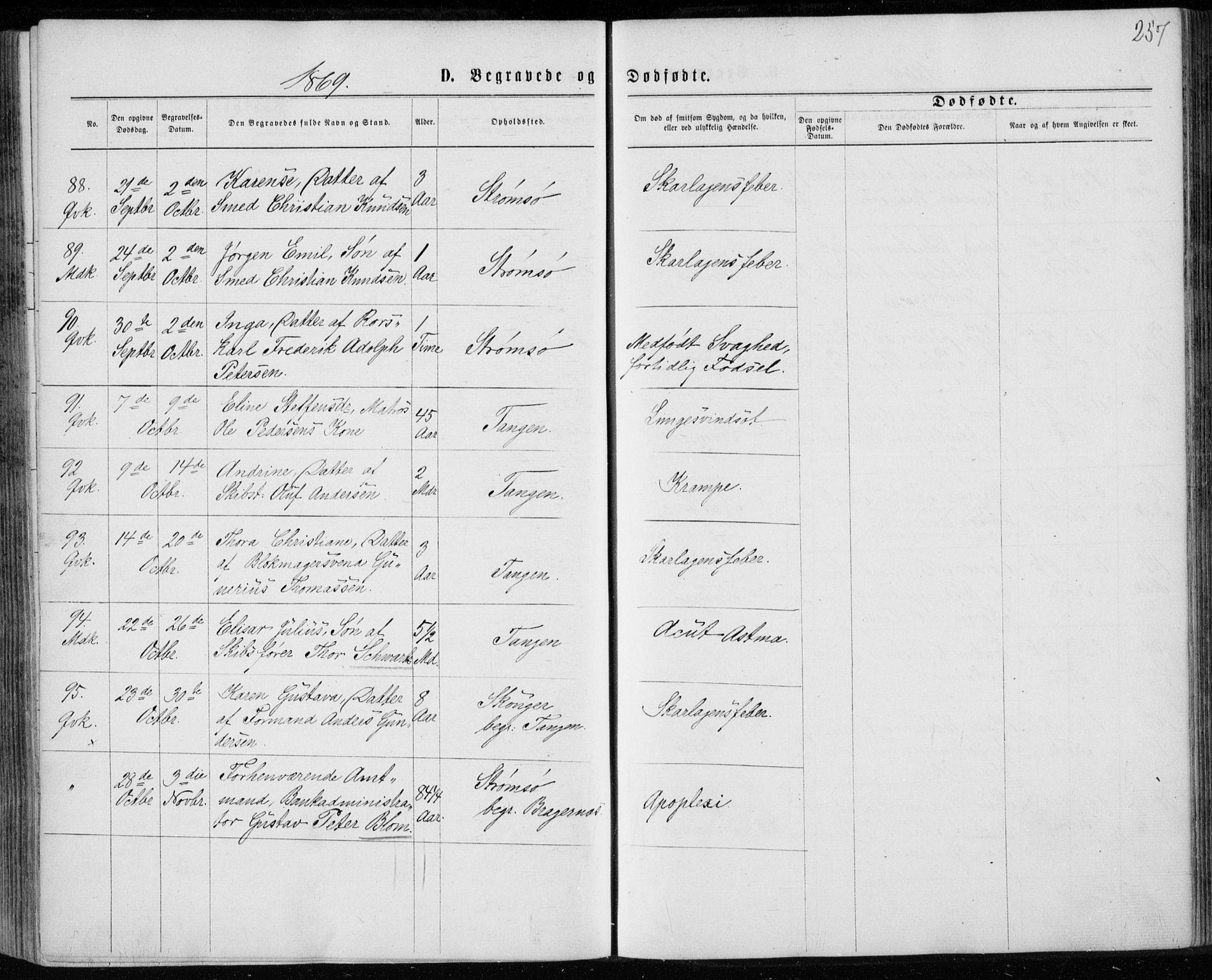 SAKO, Strømsø kirkebøker, F/Fa/L0016: Ministerialbok nr. I 16, 1868-1873, s. 257