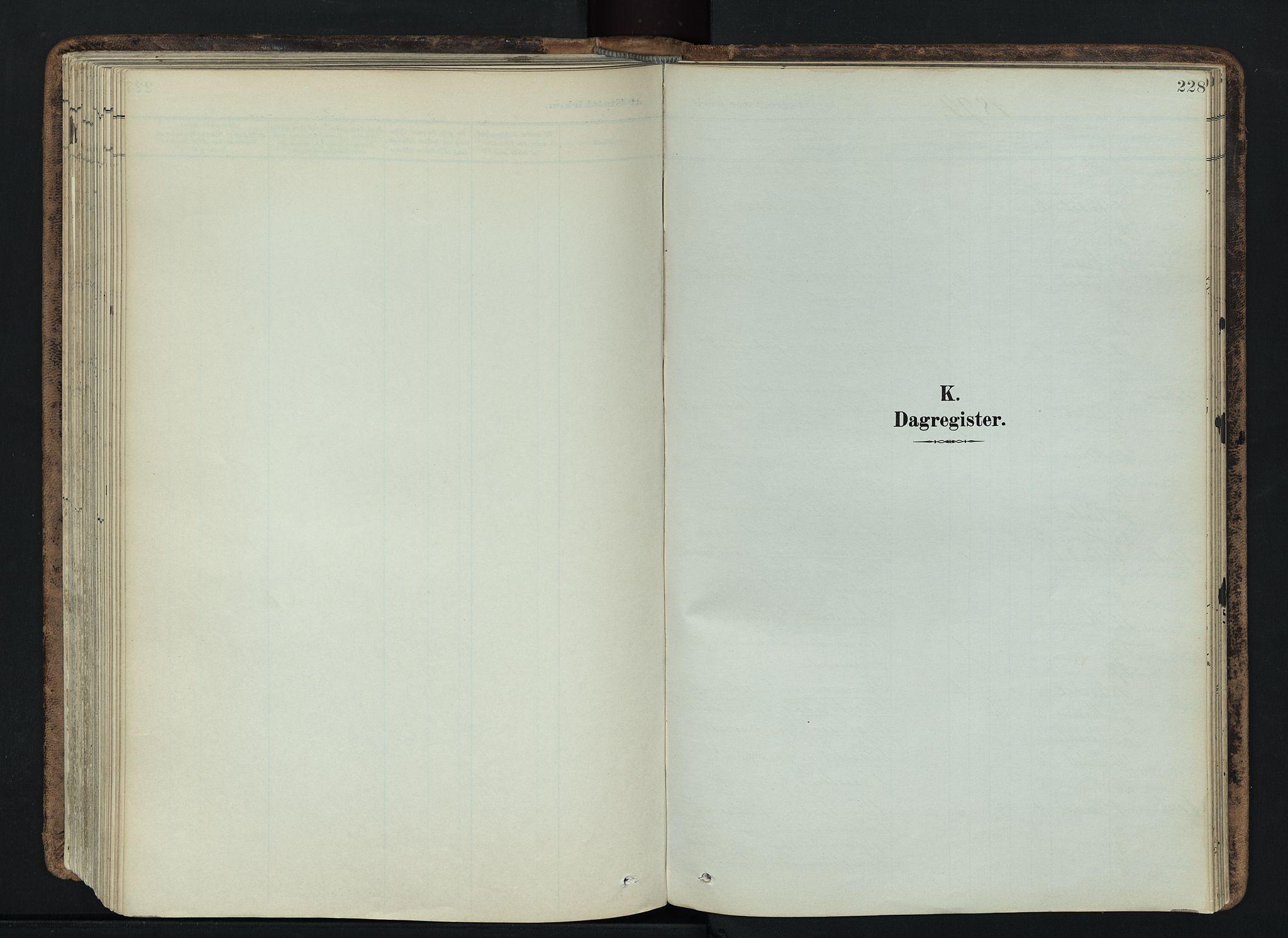 SAH, Vardal prestekontor, H/Ha/Haa/L0019: Ministerialbok nr. 19, 1893-1907, s. 228