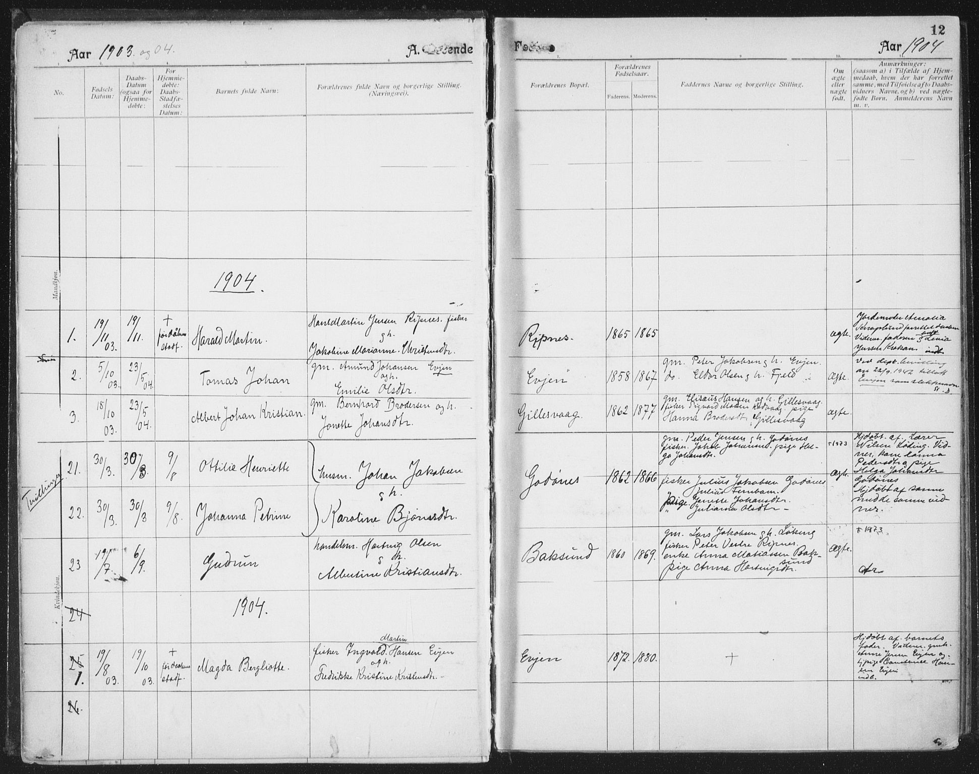 SAT, Ministerialprotokoller, klokkerbøker og fødselsregistre - Nordland, 804/L0081: Ministerialbok nr. 804A02, 1901-1915, s. 12