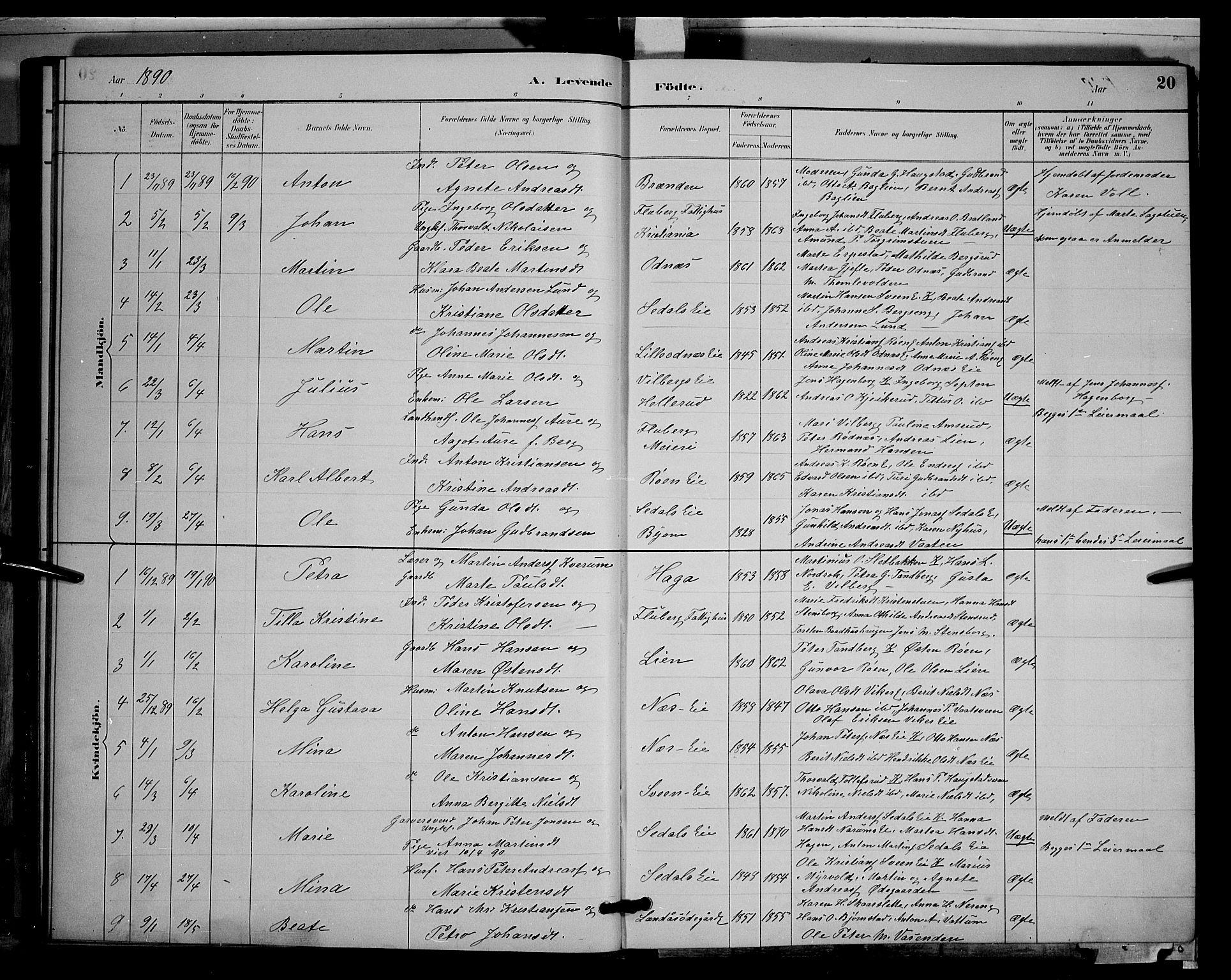 SAH, Søndre Land prestekontor, L/L0003: Klokkerbok nr. 3, 1884-1902, s. 20