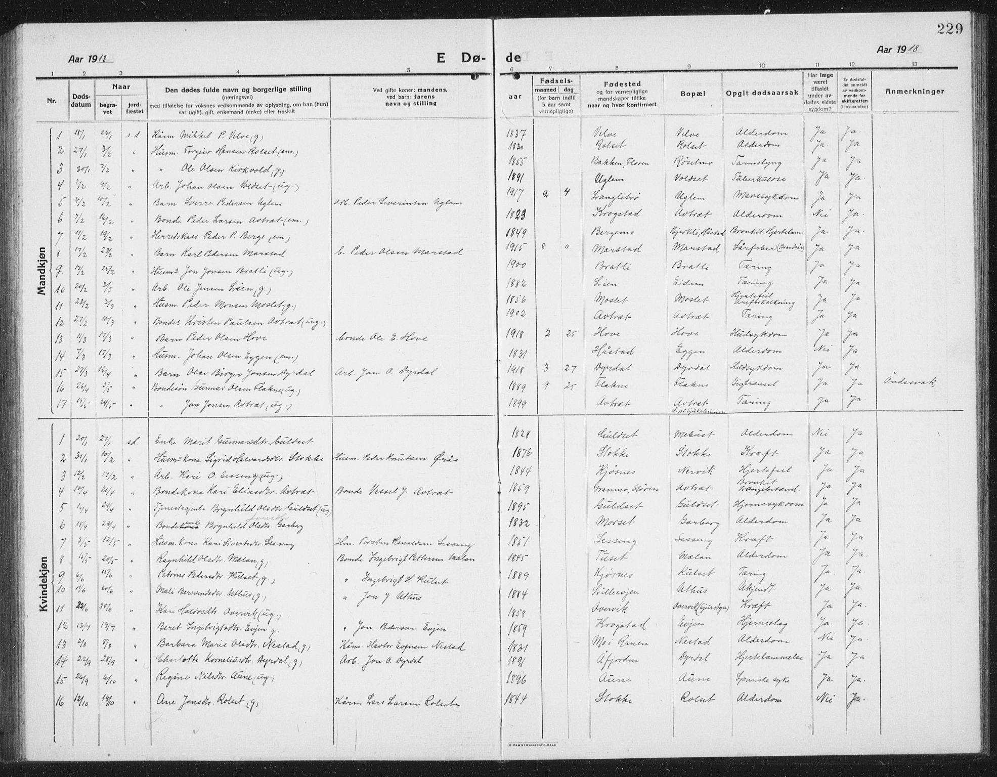 SAT, Ministerialprotokoller, klokkerbøker og fødselsregistre - Sør-Trøndelag, 695/L1158: Klokkerbok nr. 695C09, 1913-1940, s. 229