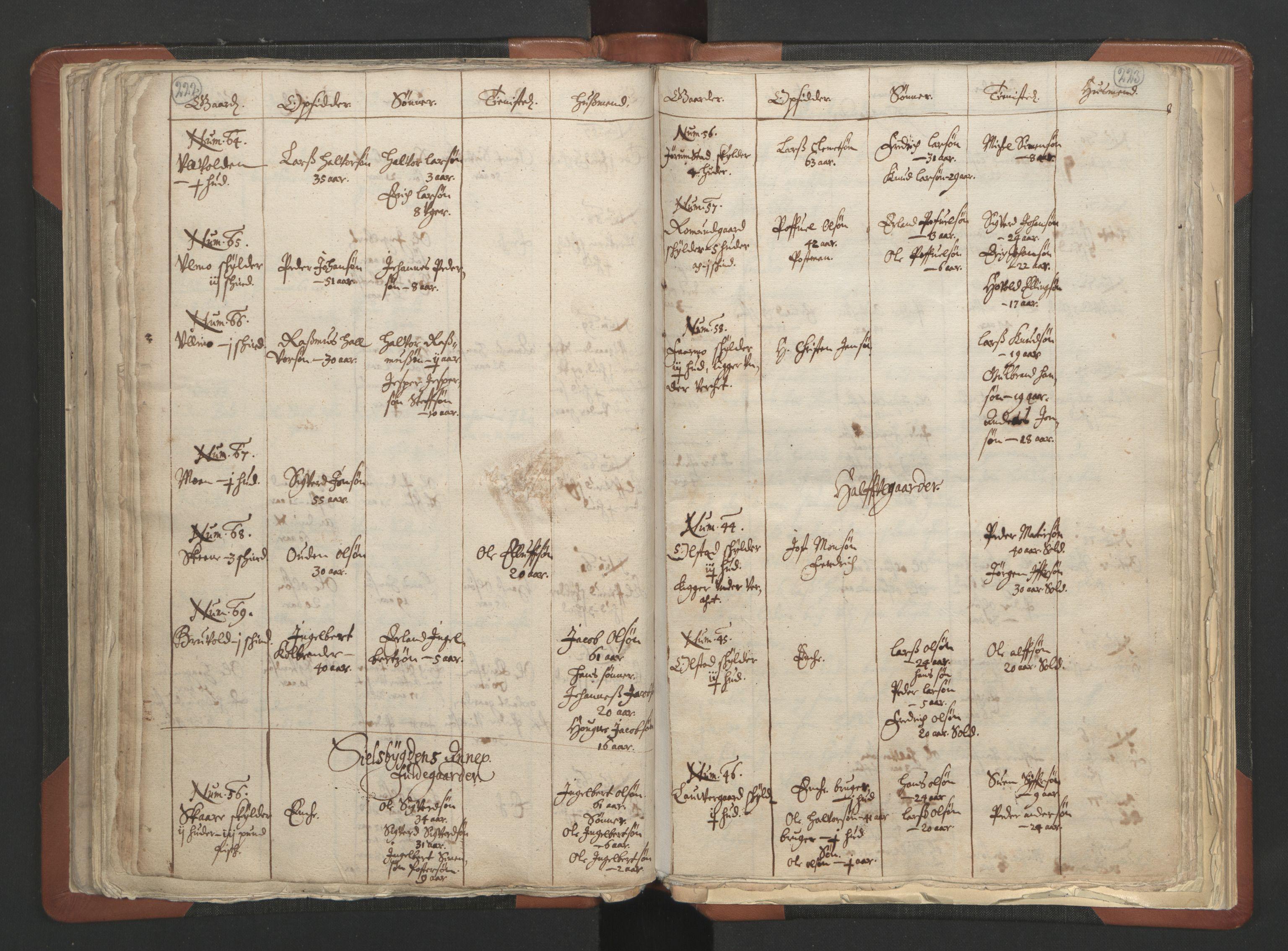 RA, Sogneprestenes manntall 1664-1666, nr. 6: Gudbrandsdal prosti, 1664-1666, s. 222-223