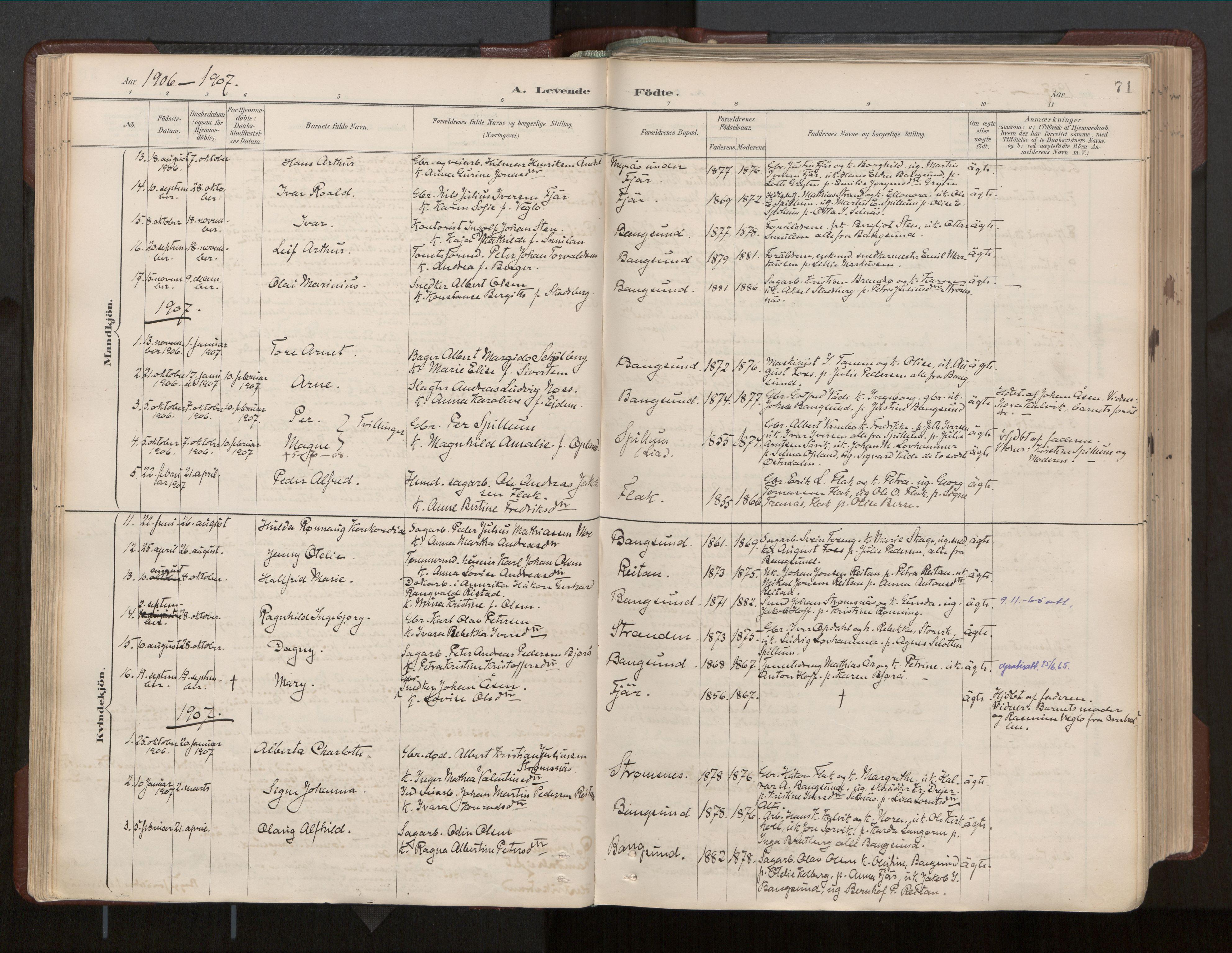 SAT, Ministerialprotokoller, klokkerbøker og fødselsregistre - Nord-Trøndelag, 770/L0589: Ministerialbok nr. 770A03, 1887-1929, s. 71
