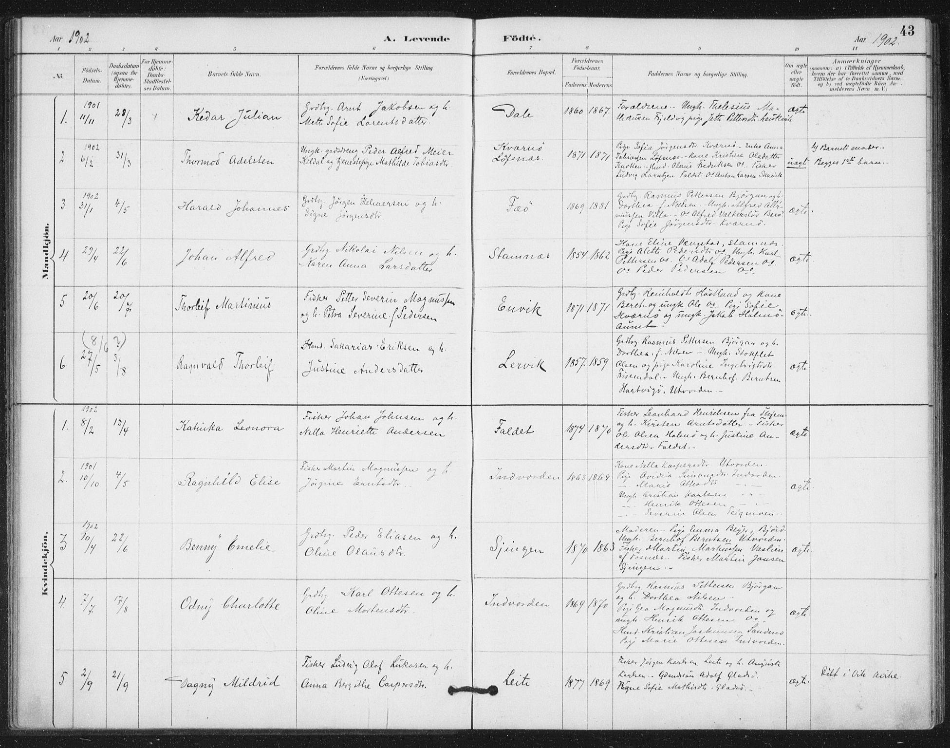 SAT, Ministerialprotokoller, klokkerbøker og fødselsregistre - Nord-Trøndelag, 772/L0603: Ministerialbok nr. 772A01, 1885-1912, s. 43