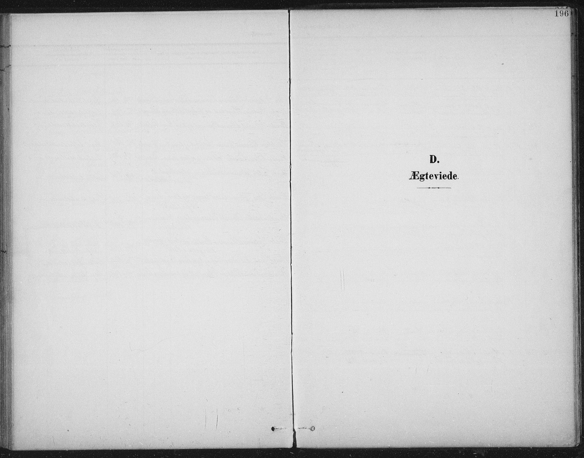 SAT, Ministerialprotokoller, klokkerbøker og fødselsregistre - Nord-Trøndelag, 724/L0269: Klokkerbok nr. 724C05, 1899-1920, s. 196