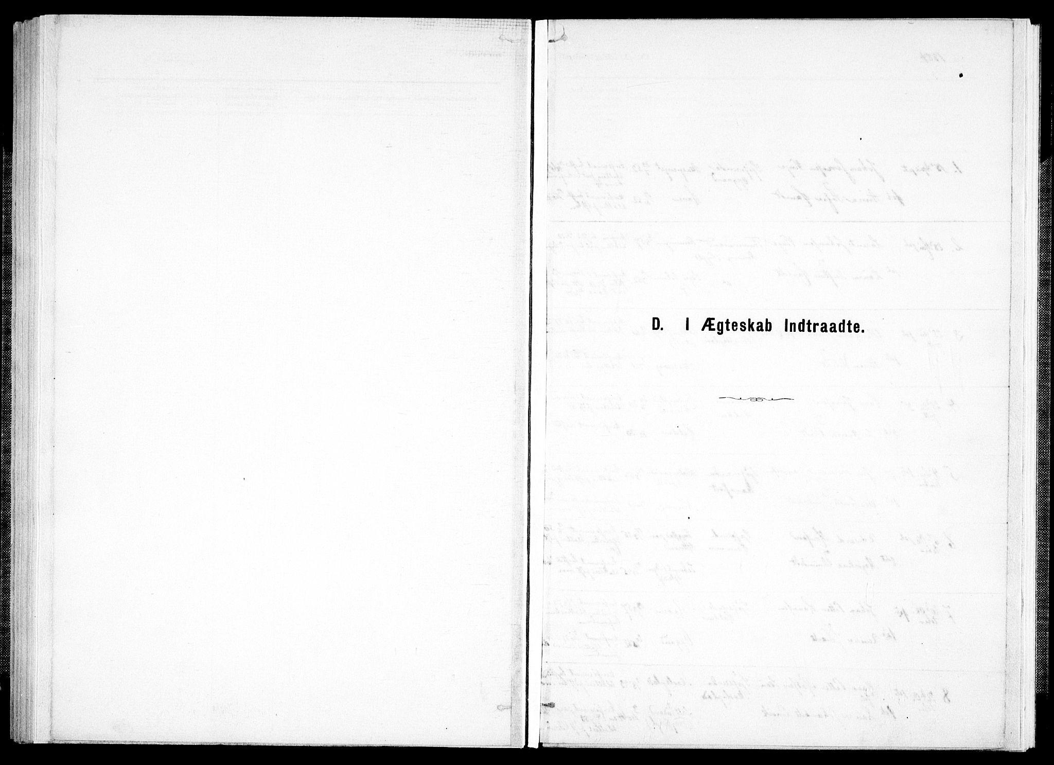 SAT, Ministerialprotokoller, klokkerbøker og fødselsregistre - Nord-Trøndelag, 733/L0325: Ministerialbok nr. 733A04, 1884-1908