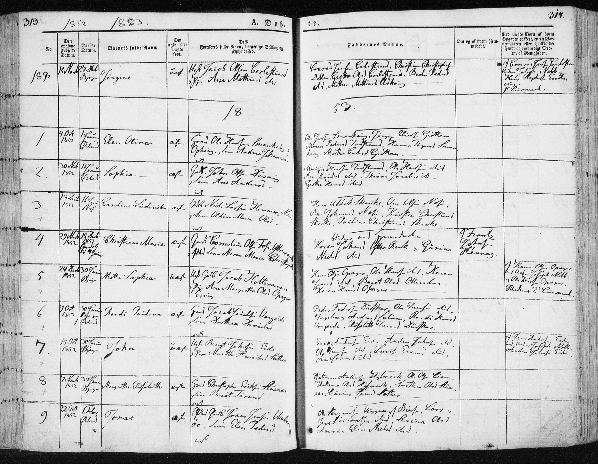 SAT, Ministerialprotokoller, klokkerbøker og fødselsregistre - Sør-Trøndelag, 659/L0736: Ministerialbok nr. 659A06, 1842-1856, s. 313-314