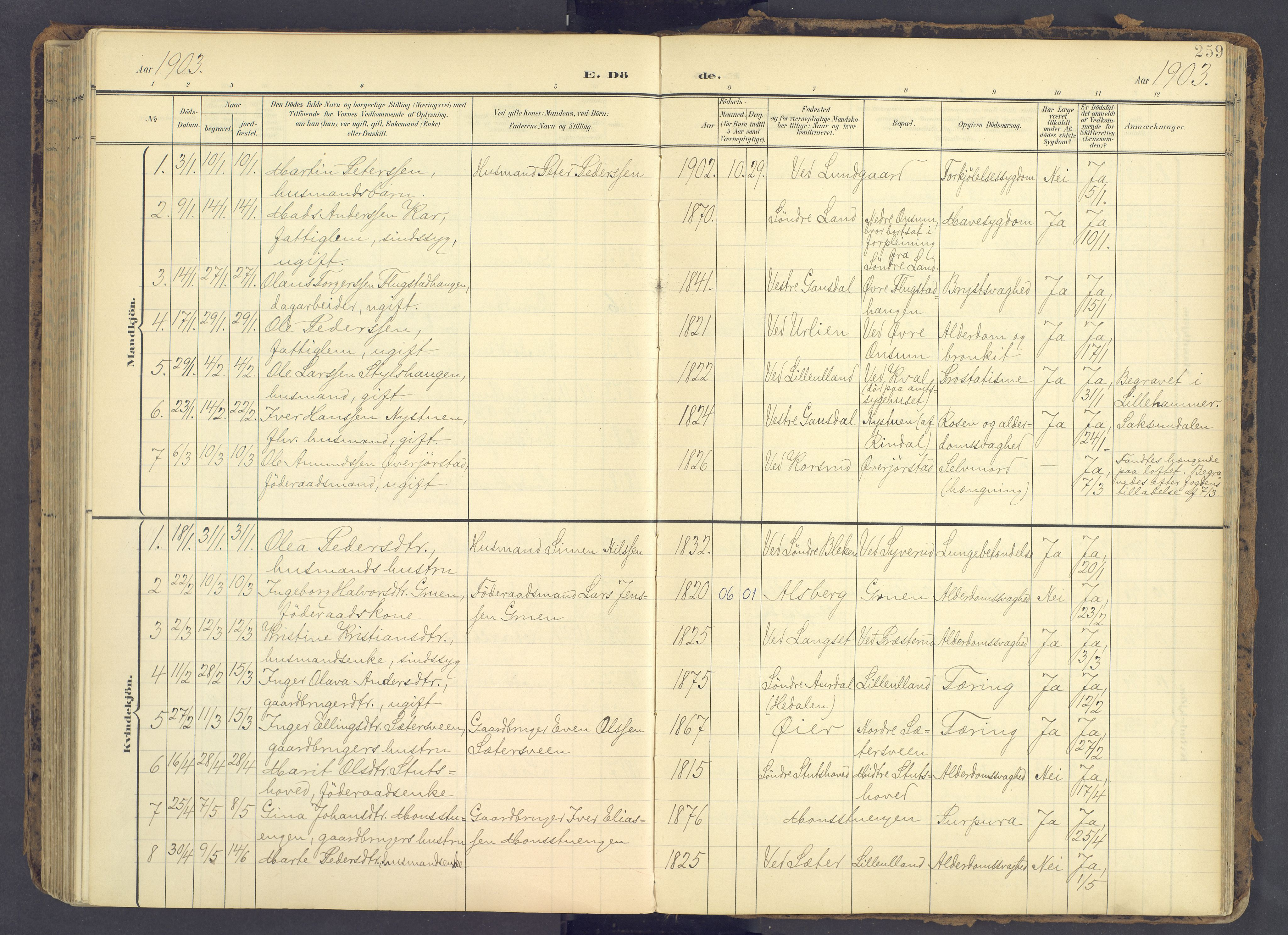 SAH, Fåberg prestekontor, Ministerialbok nr. 12, 1899-1915, s. 259