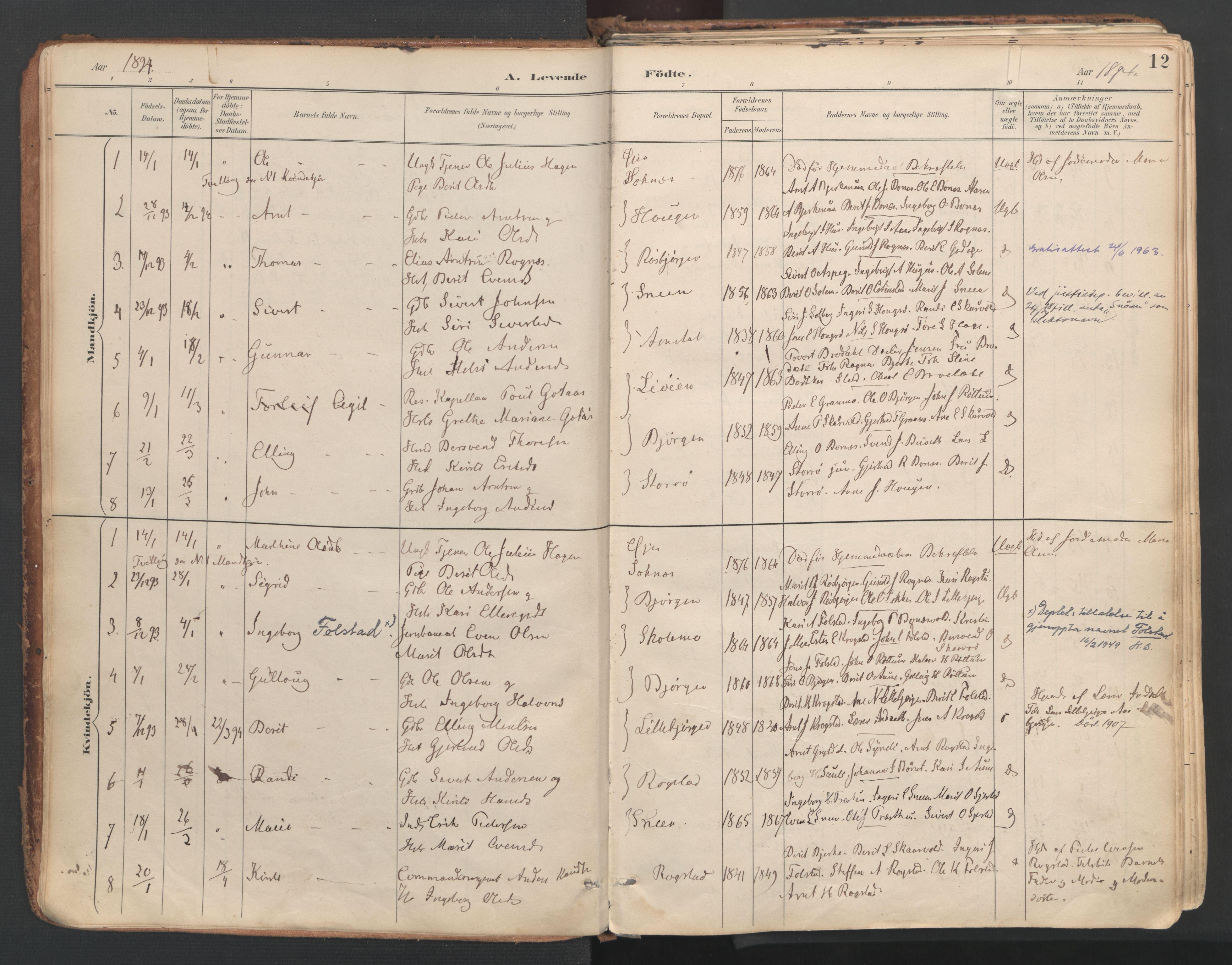 SAT, Ministerialprotokoller, klokkerbøker og fødselsregistre - Sør-Trøndelag, 687/L1004: Ministerialbok nr. 687A10, 1891-1923, s. 12