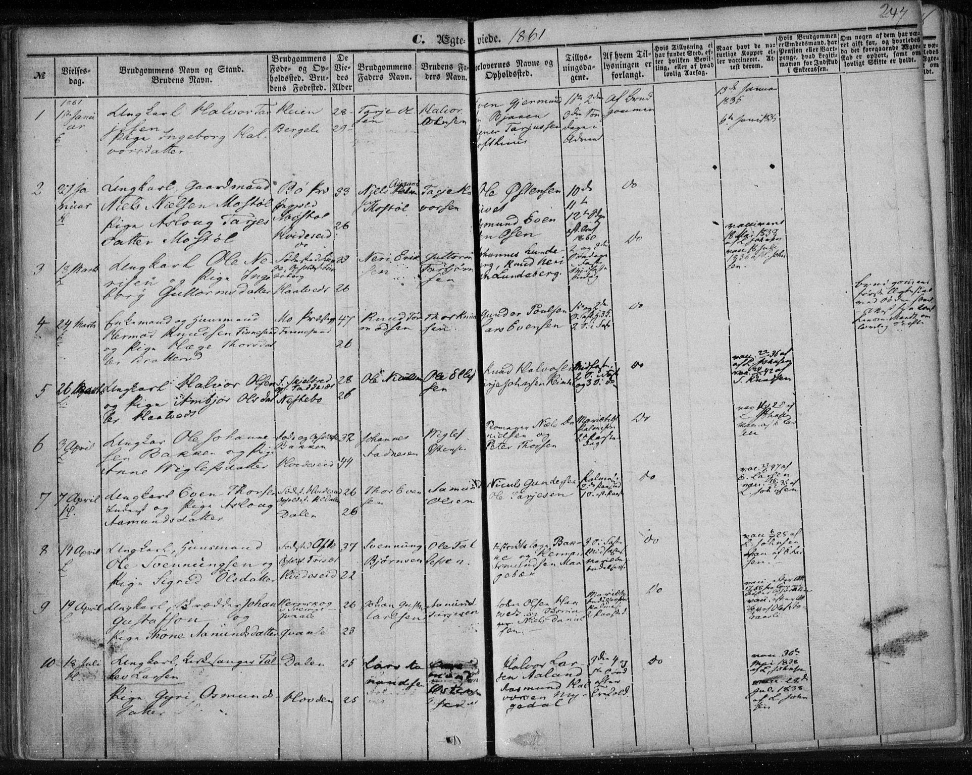 SAKO, Lårdal kirkebøker, F/Fa/L0006: Ministerialbok nr. I 6, 1861-1886, s. 247