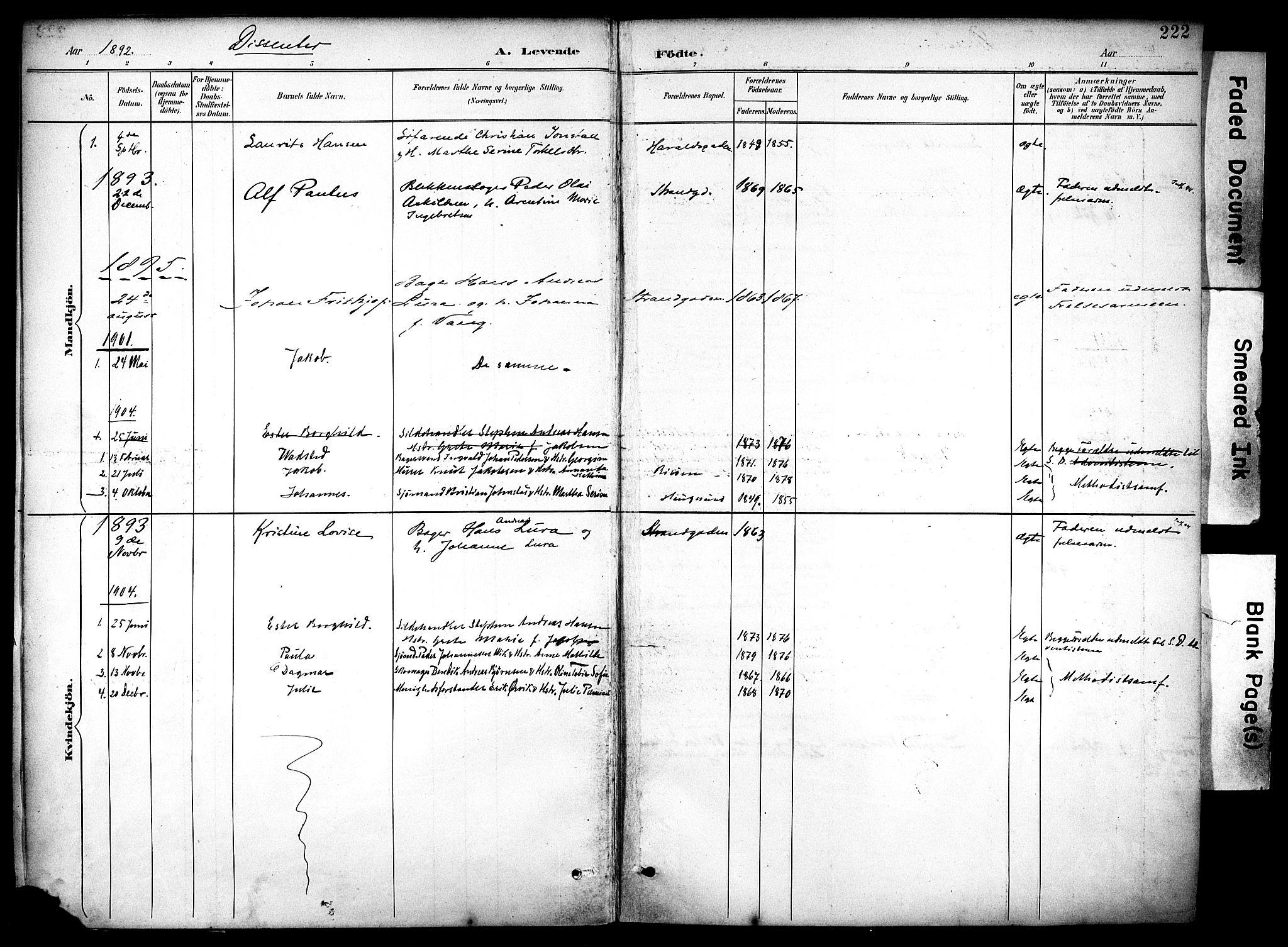 SAST, Haugesund sokneprestkontor, H/Ha/Haa/L0006: Ministerialbok nr. A 6, 1891-1907, s. 222